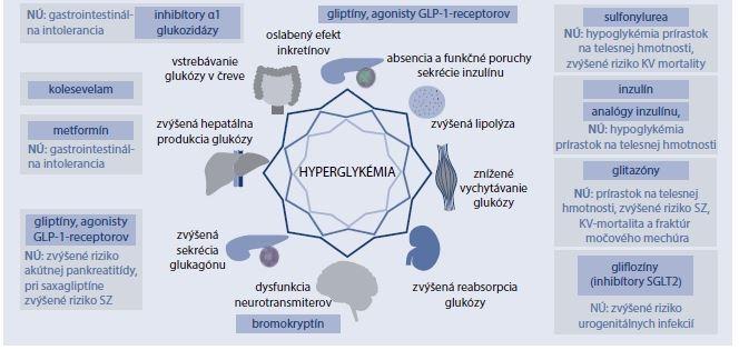 Schéma 6.1 | Jednotlivé úrovne patogénnych mechanizmov DM2T a možnosti ich ovplyvnenia farmakologickou liečbou