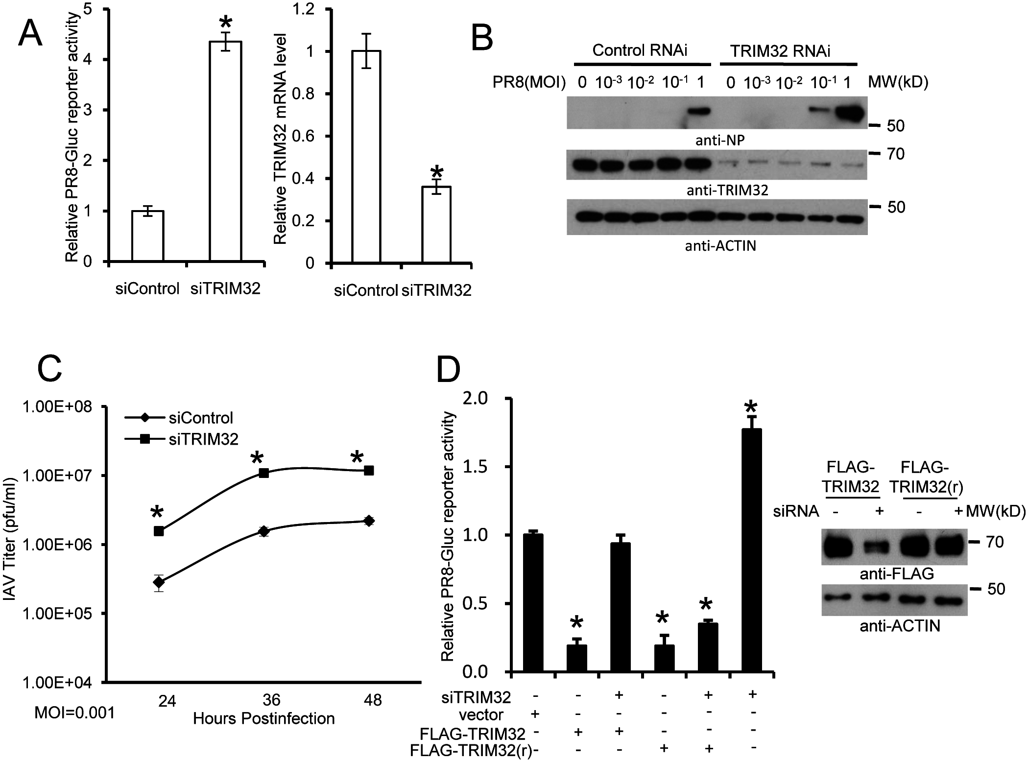 RNAi depletion of TRIM32 promotes influenza virus infection.