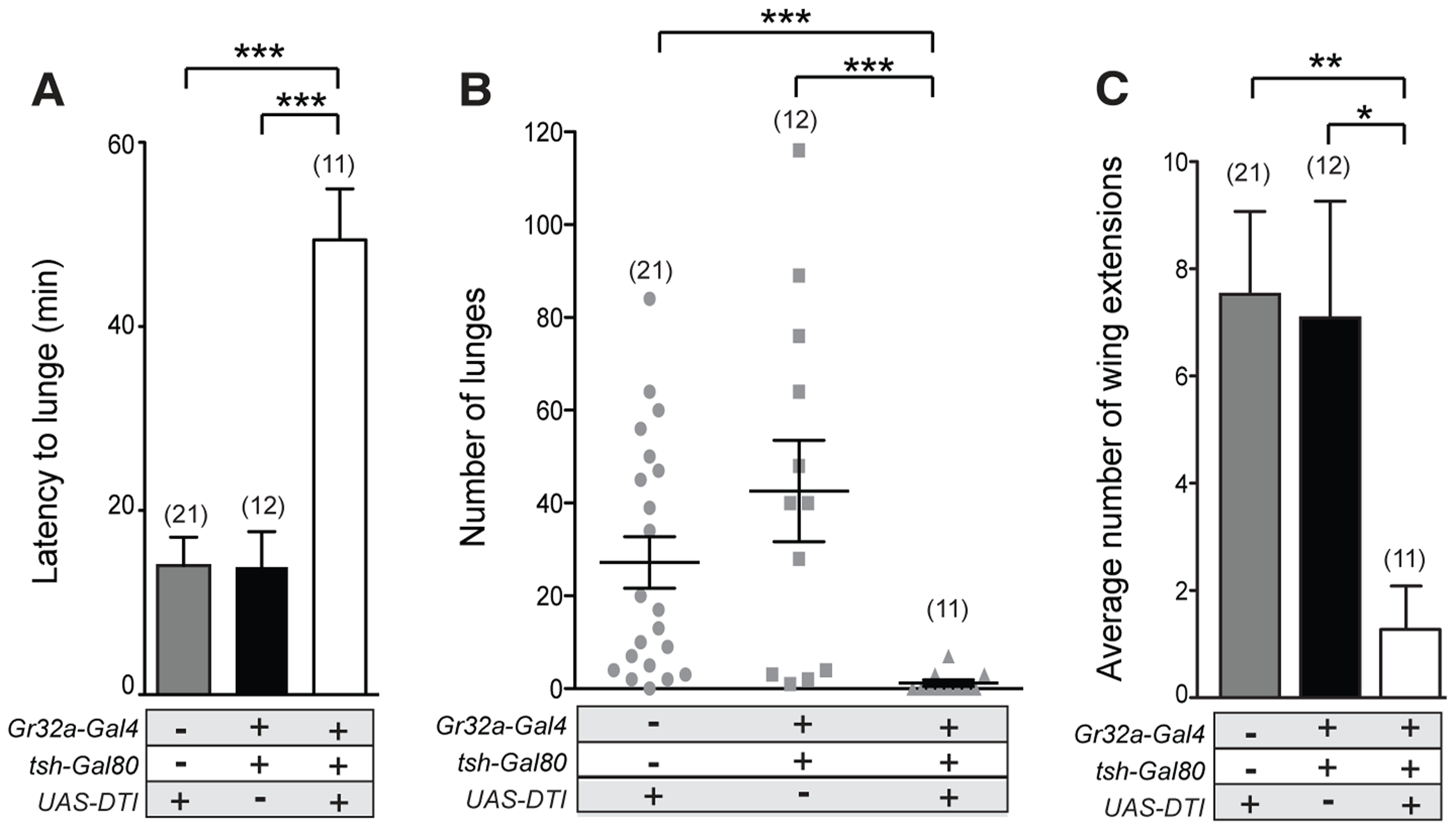 Gr32a chemosensory neurons located in the mouth promote aggression without an elevation in male-male courtship.
