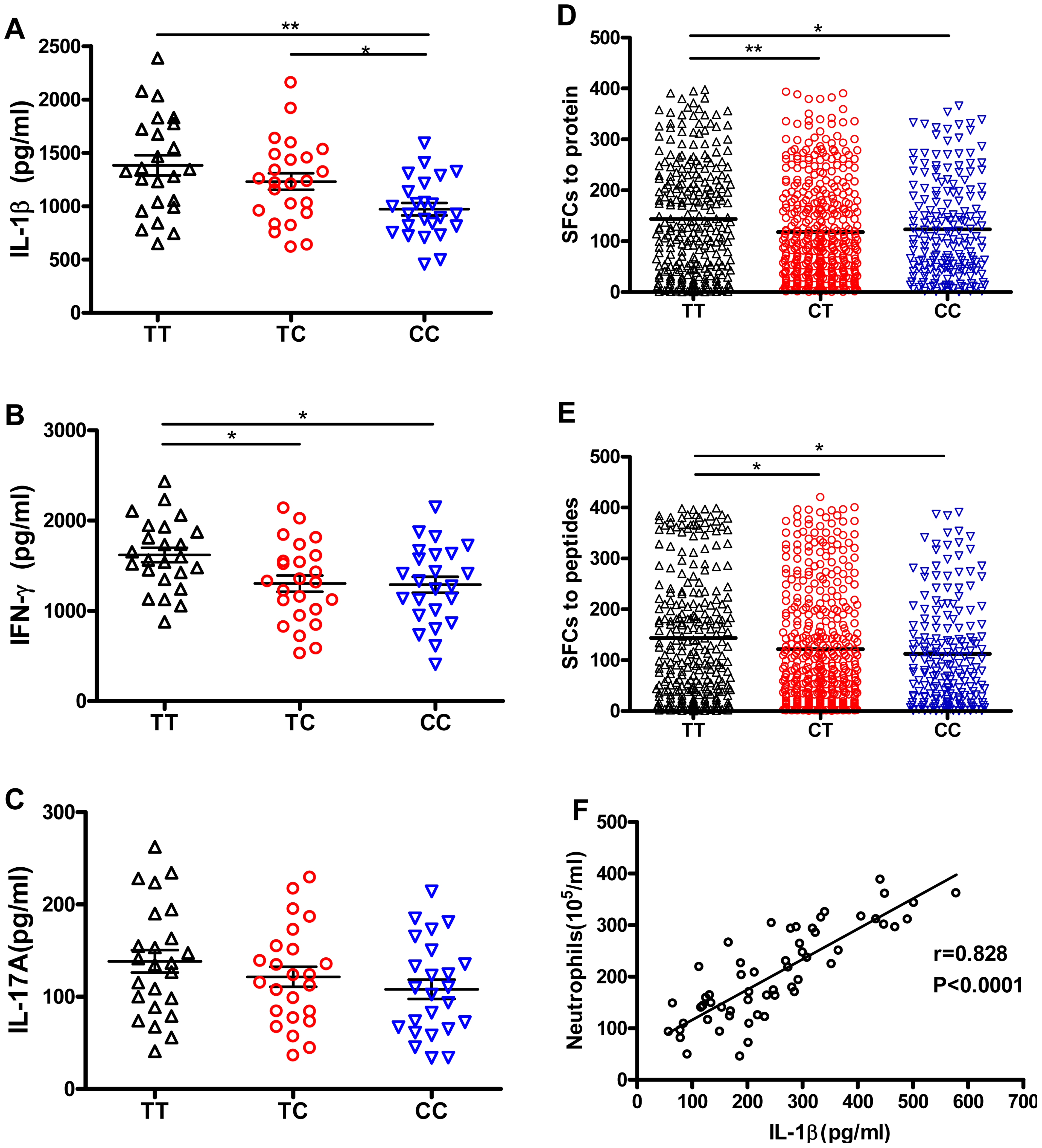 rs1143627T-induced IL-1β has little effect on Mtb-specific lymphocyte responses, but IL-1β correlates with neutrophil recruitment to the lung.