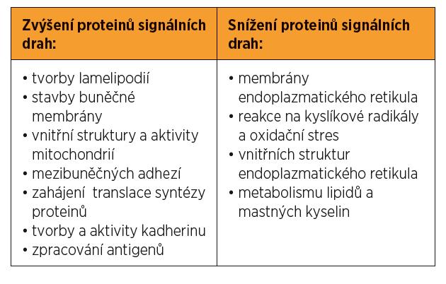 Proteom receptivního endometria