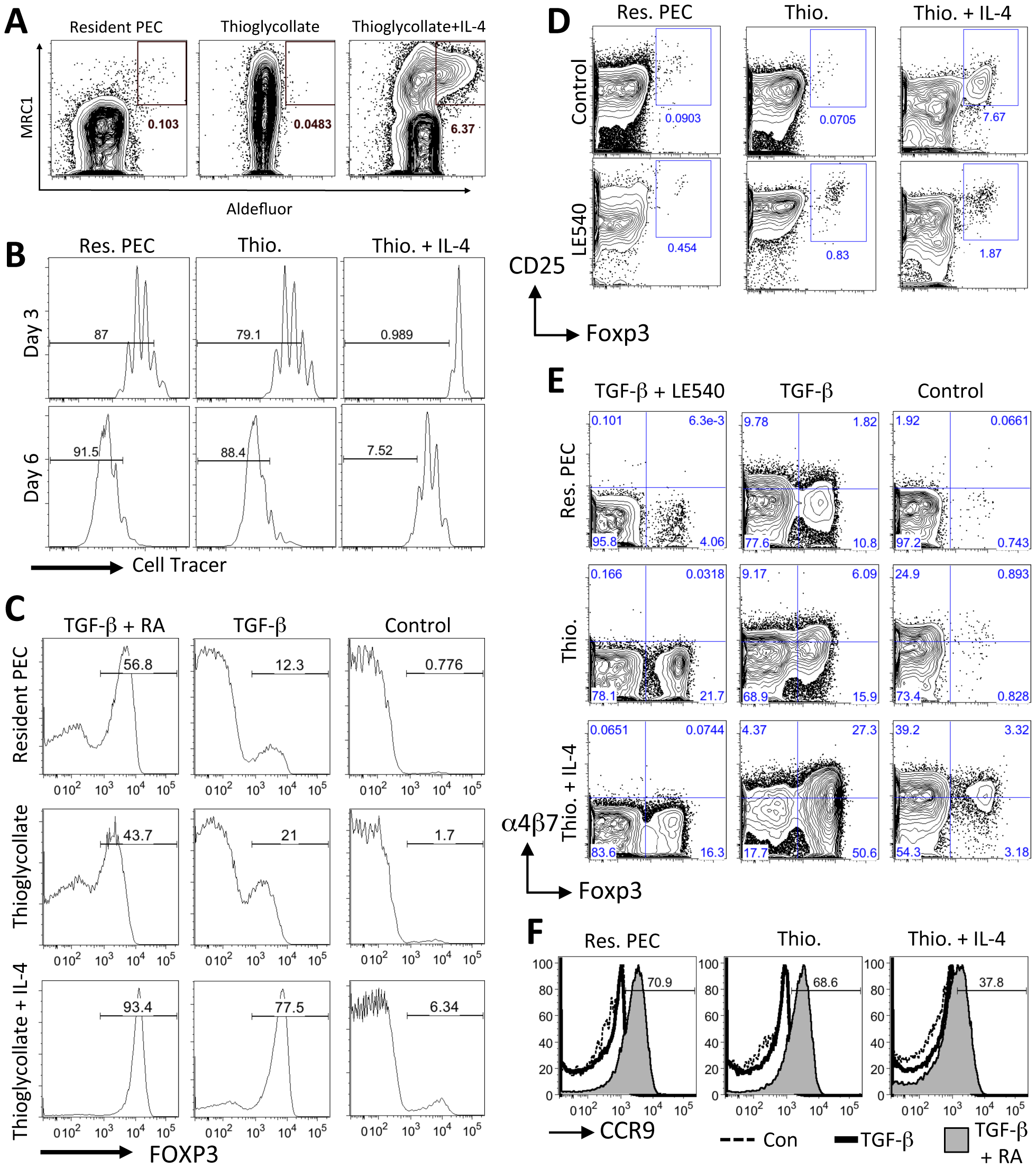 AAMφ have an enhanced capacity to induce Foxp3 expression in T cells.