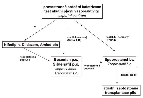 Terapeutický algoritmus u plicní arteriální hypertenze