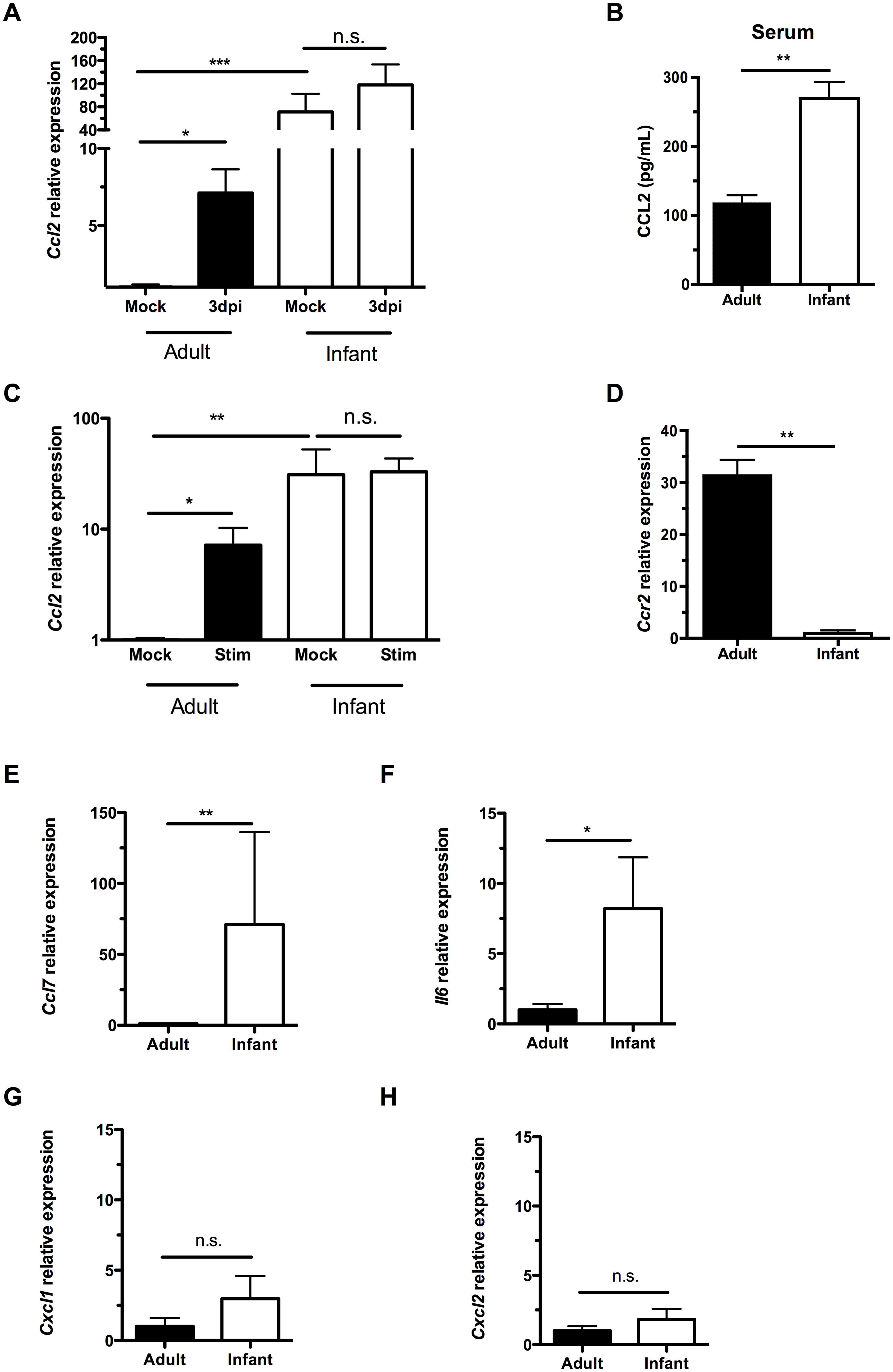 Infant mice do not form a gradient of CCL2 expression during colonization.