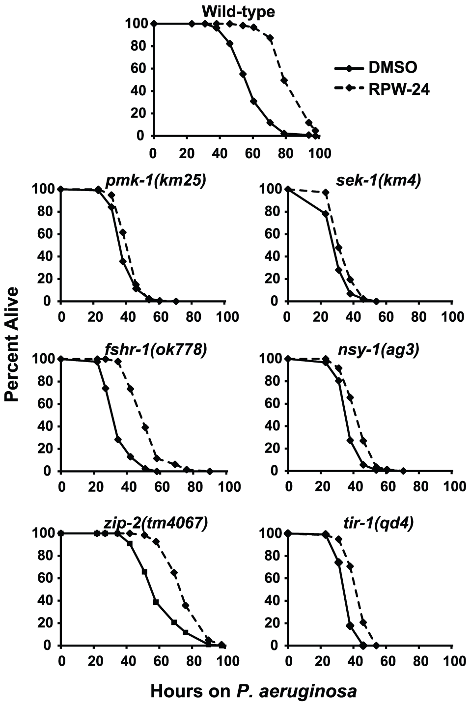 Full efficacy of RPW-24 in prolonging the lifespan of <i>C. elegans</i> infected with <i>P. aeruginosa</i> requires the p38 MAP kinase signaling cassette.