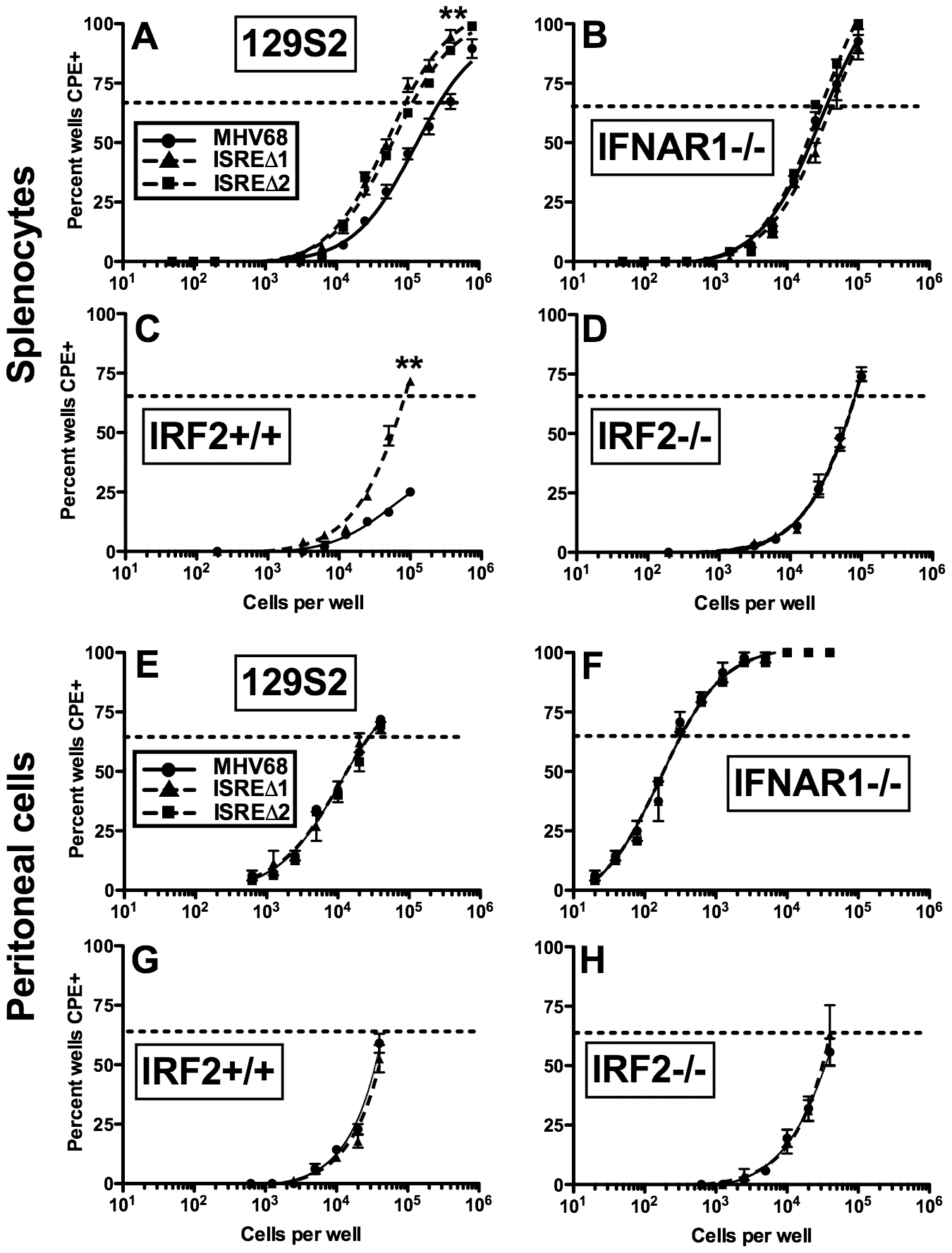 The M2 ISRE requires IFNAR1 and IRF2 to represses viral reactivation from latent splenocytes.