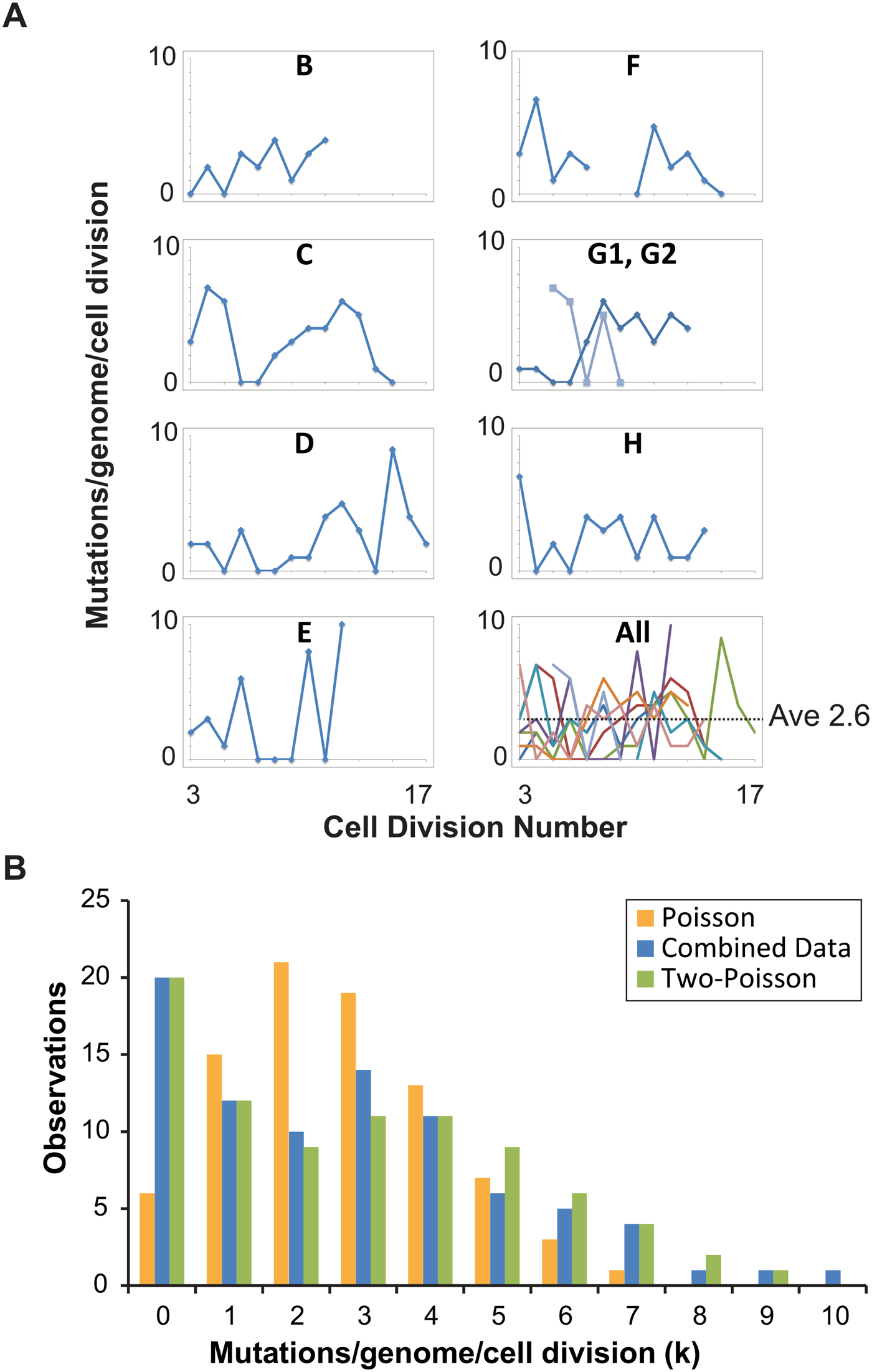Distribution of single cell mutation counts in mother cells.