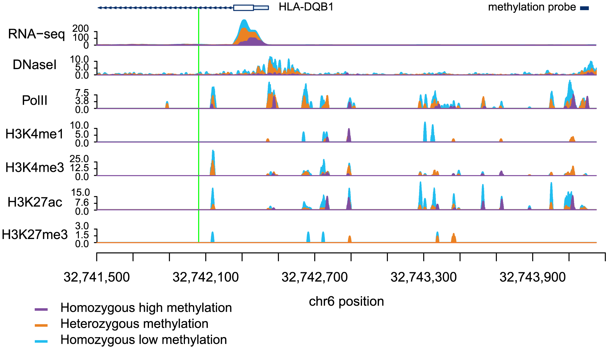 Read counts segregated by meQTL genotype for multiple regulatory phenotypes.