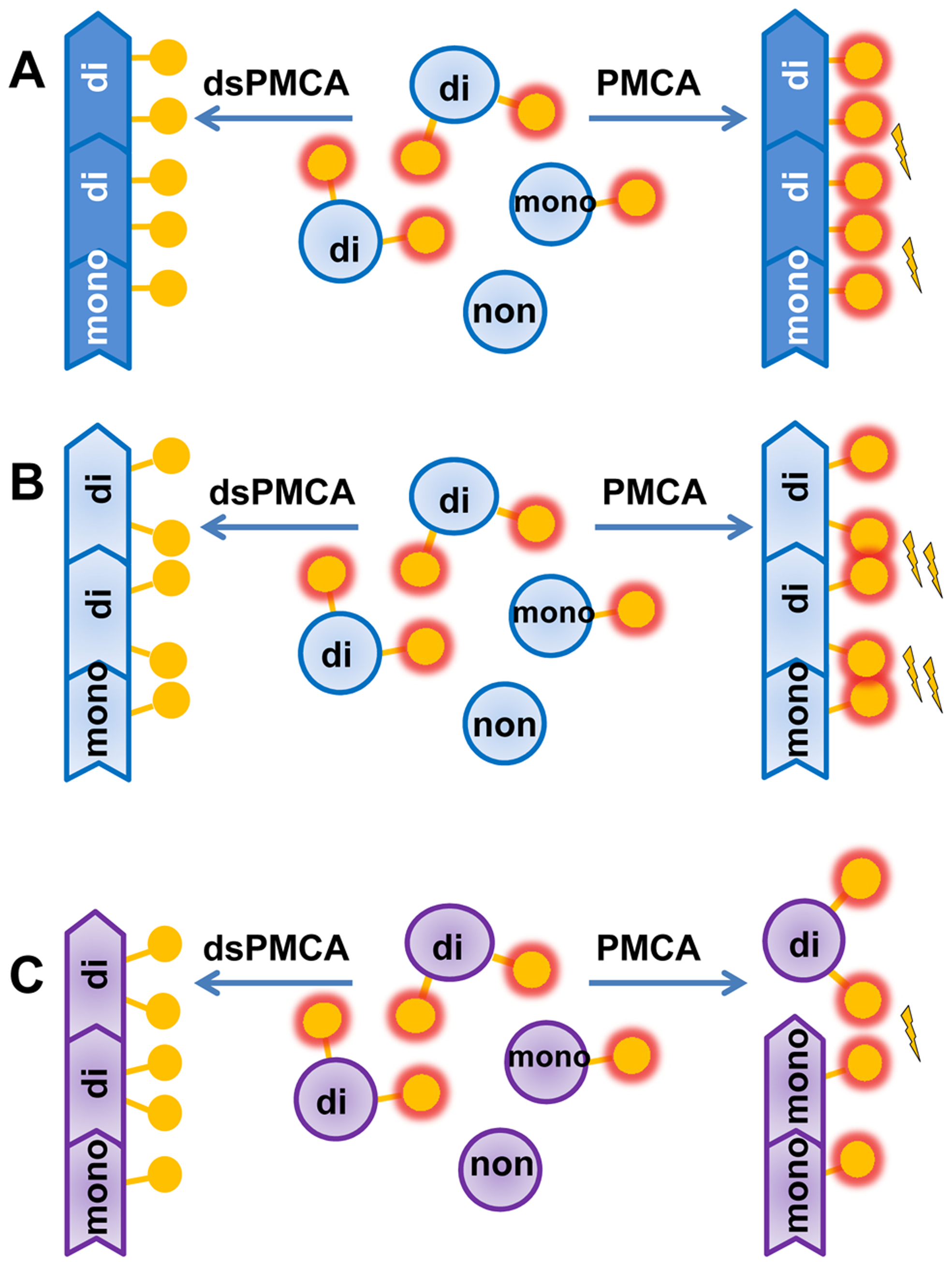 Schematic diagrams illustrating that prion polymerization and PrP<sup>Sc</sup> glycoform ratio are controlled by sialic acid residues of glycans.