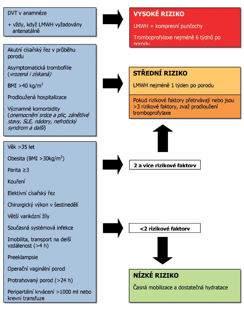 Schéma 1 Zhodnocení a management rizika TEN po porodu Adaptováno z doporučení RCOG 2009 [80].