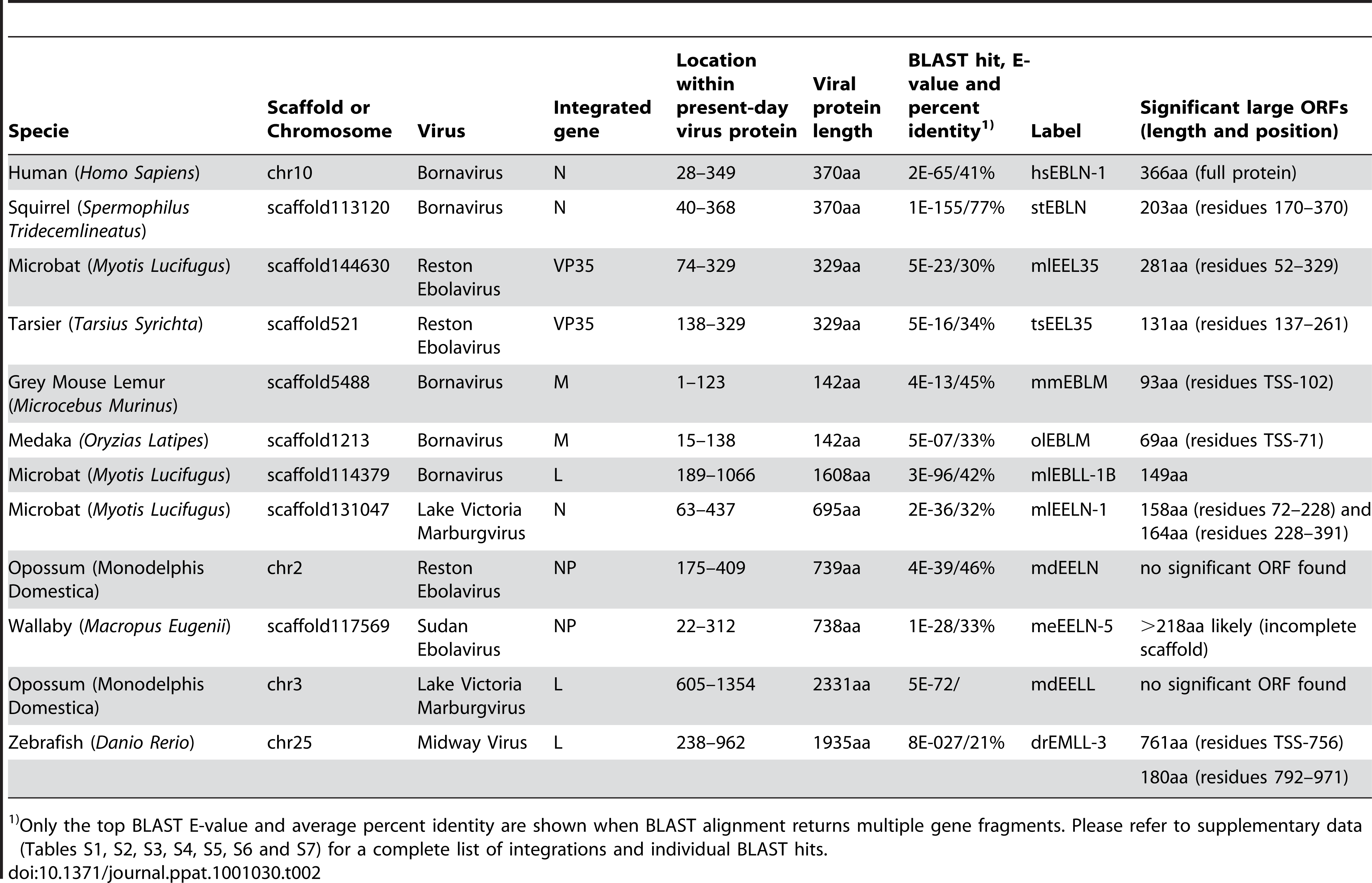 Selected endogenous viral sequences found in vertebrate genomes.