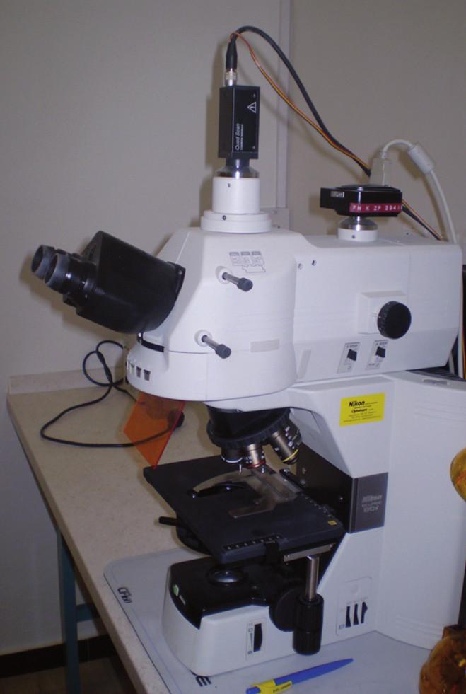 Během 1–3 min od odběru se oba vzorky dostanou v termoboxu do laboratoře patologa, jenž najde 5–7 reprezentativních lokalit v každém vzorku, tyto zaznamená pomocí digitální vysokorychlostní videokamery do paměti PC (hodnocení záznamu je provedeno až následně pečlivým hodnocením snímek po snímku – dle standardu popsaného v článku).