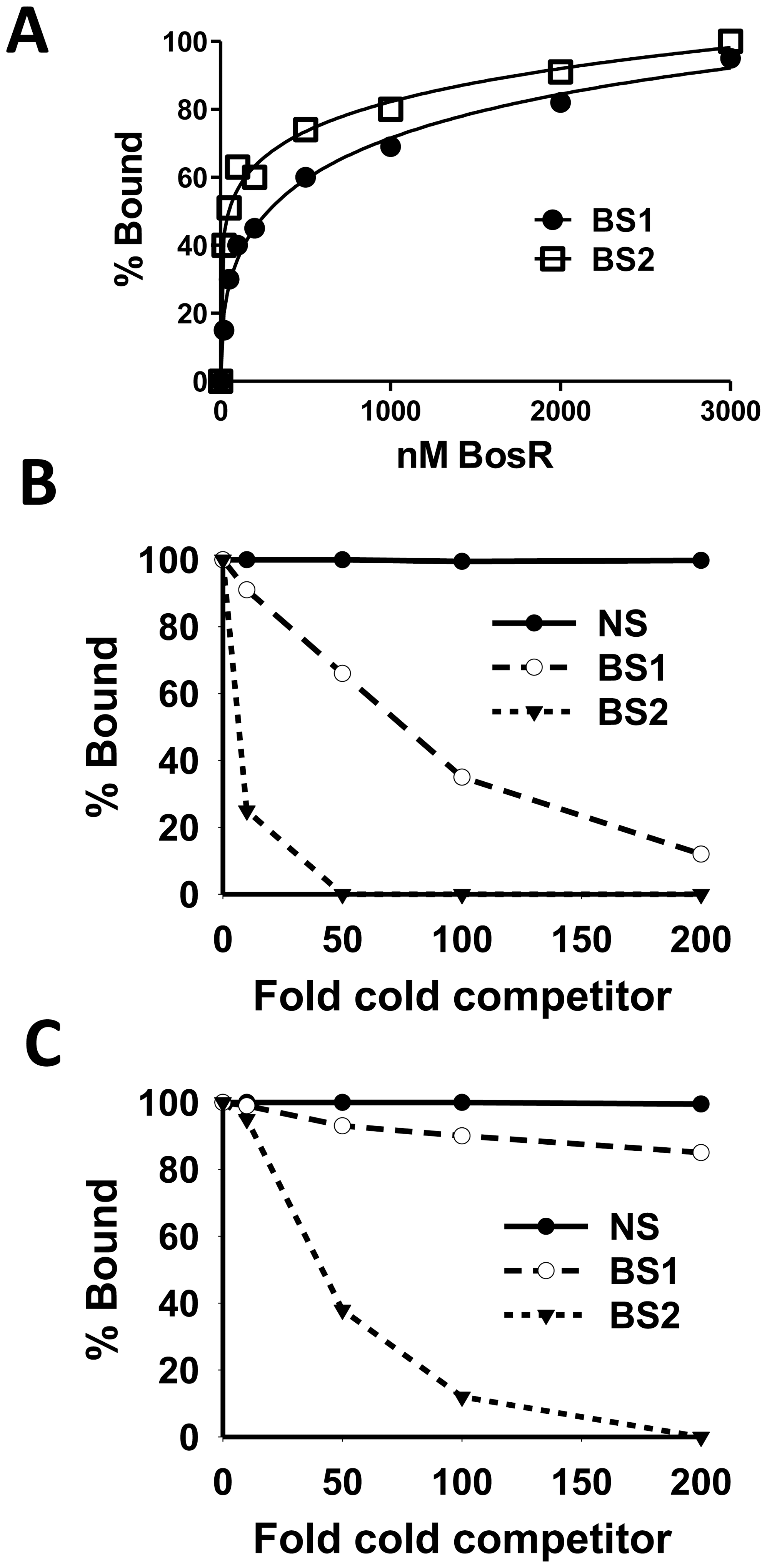 Comparison of the relative affinity of BosR for BS1 (ZM132) and BS2 (ZM127).
