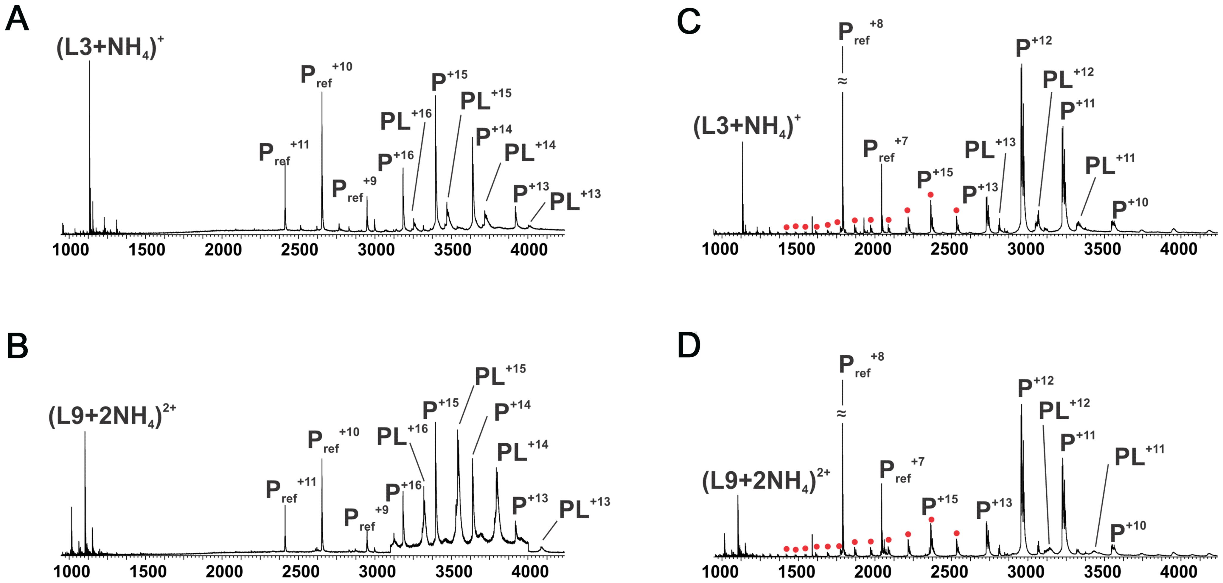 ESI mass spectra to examine polymannuronic acid binding.