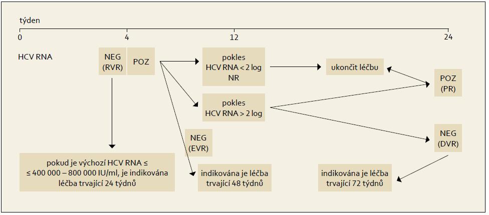 Léčba vedená podle dosažené virologické odpovědi během terapie, genotyp HCV 1. Fig. 6. Treatment administered based on the achieved virological response during the therapy, HCV 1 genotype.
