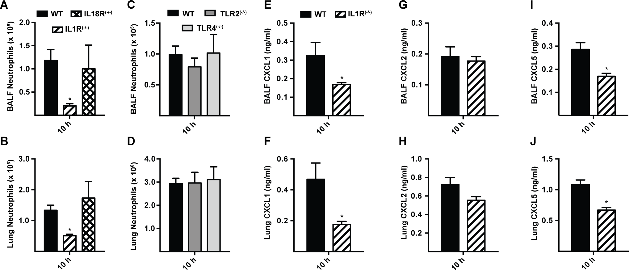 Interleukin-1 receptor signaling controls MyD88-dependent chemokine induction and neutrophil recruitment.