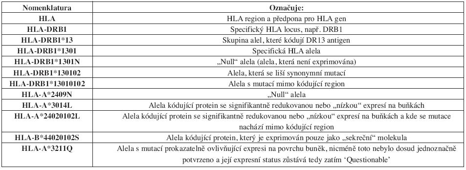 Princip dosavadní nomenklatury pro geny HLA systému z roku 2004 (platná do 07/2009).