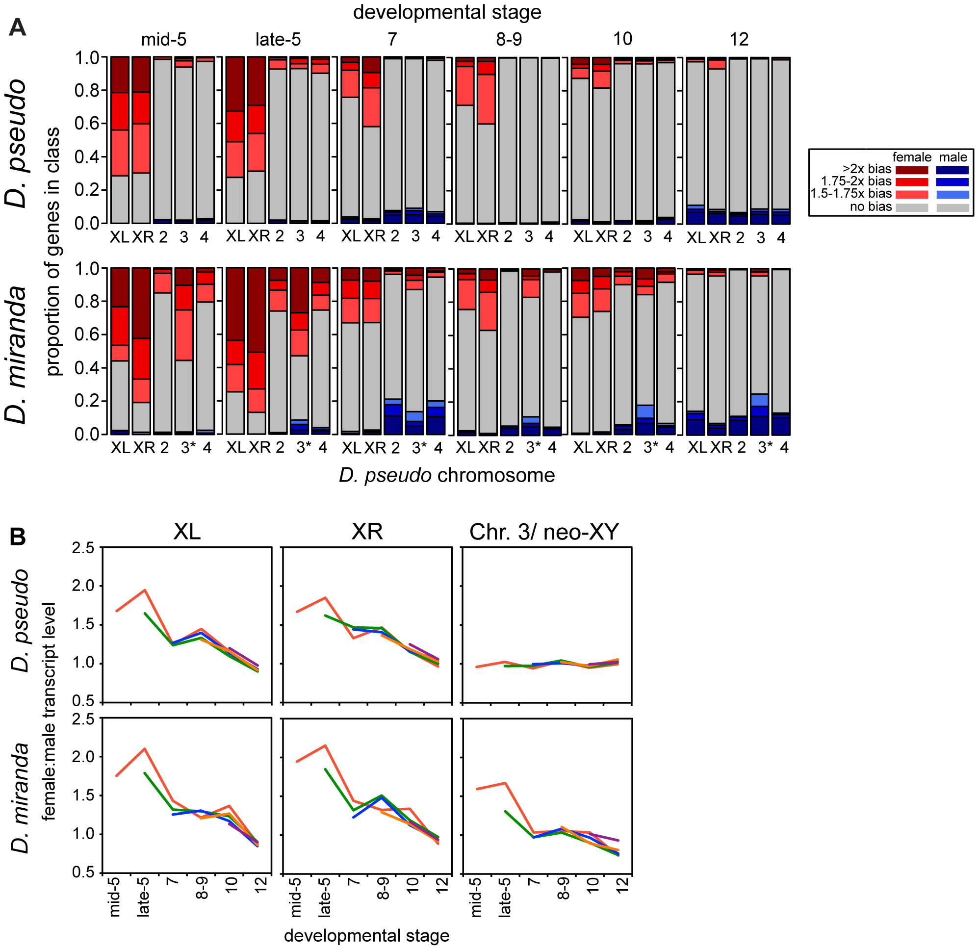 Onset of dosage compensation in <i>D. pseudoobscura</i> and <i>D. miranda</i>, on a genome-wide scale.