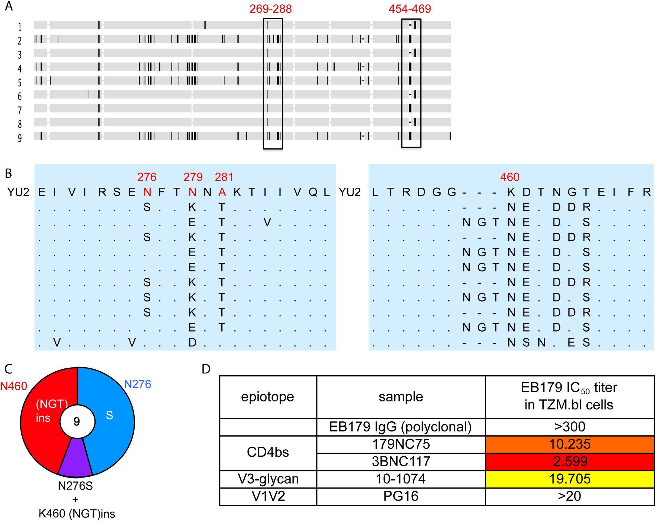Autologous viruses from EB179.