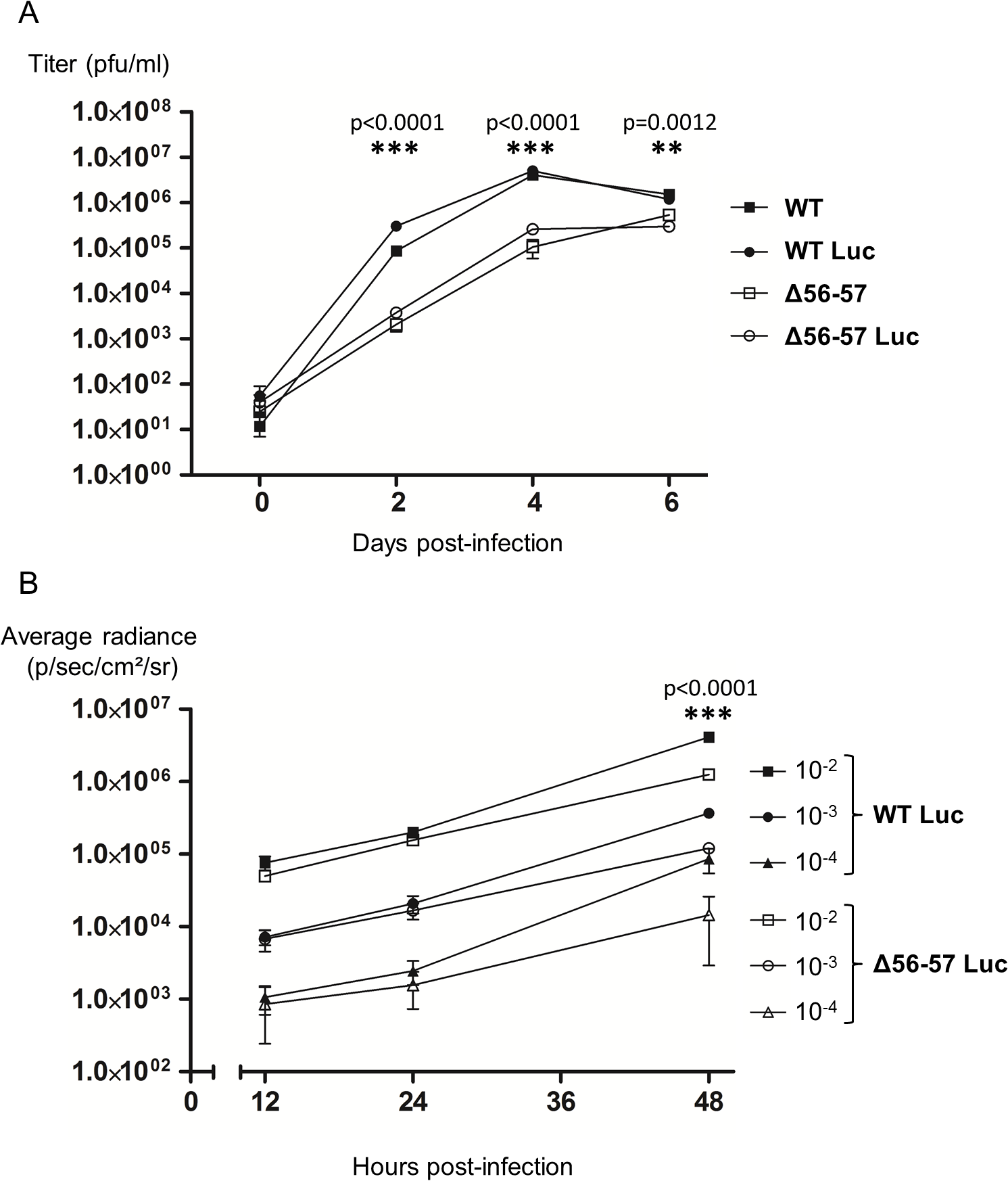 Effect of the double ORF56-57 deletion on CyHV-3 replication in vitro.
