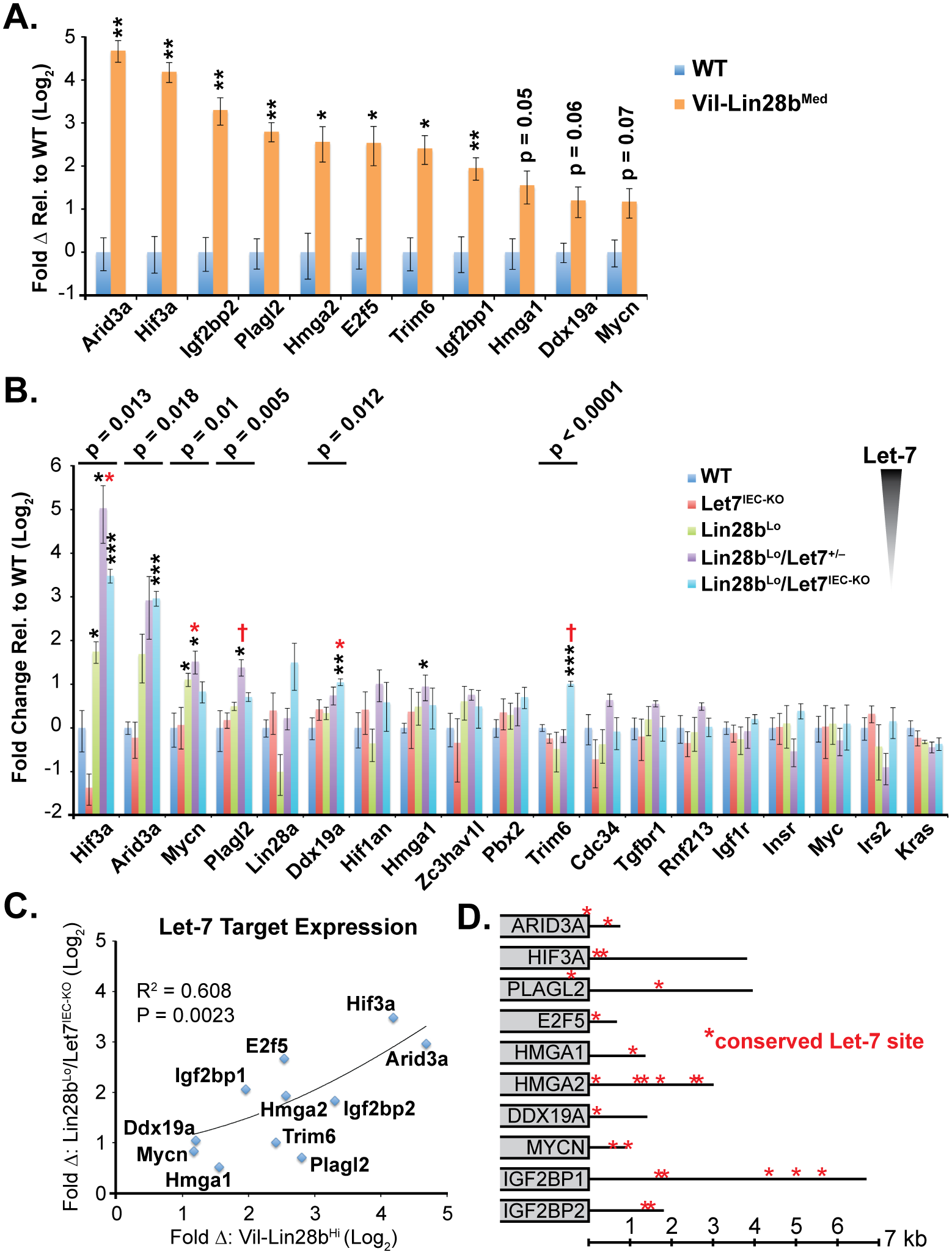 Quantification of Let-7 target mRNA levels in intestinal epithelium crypts.