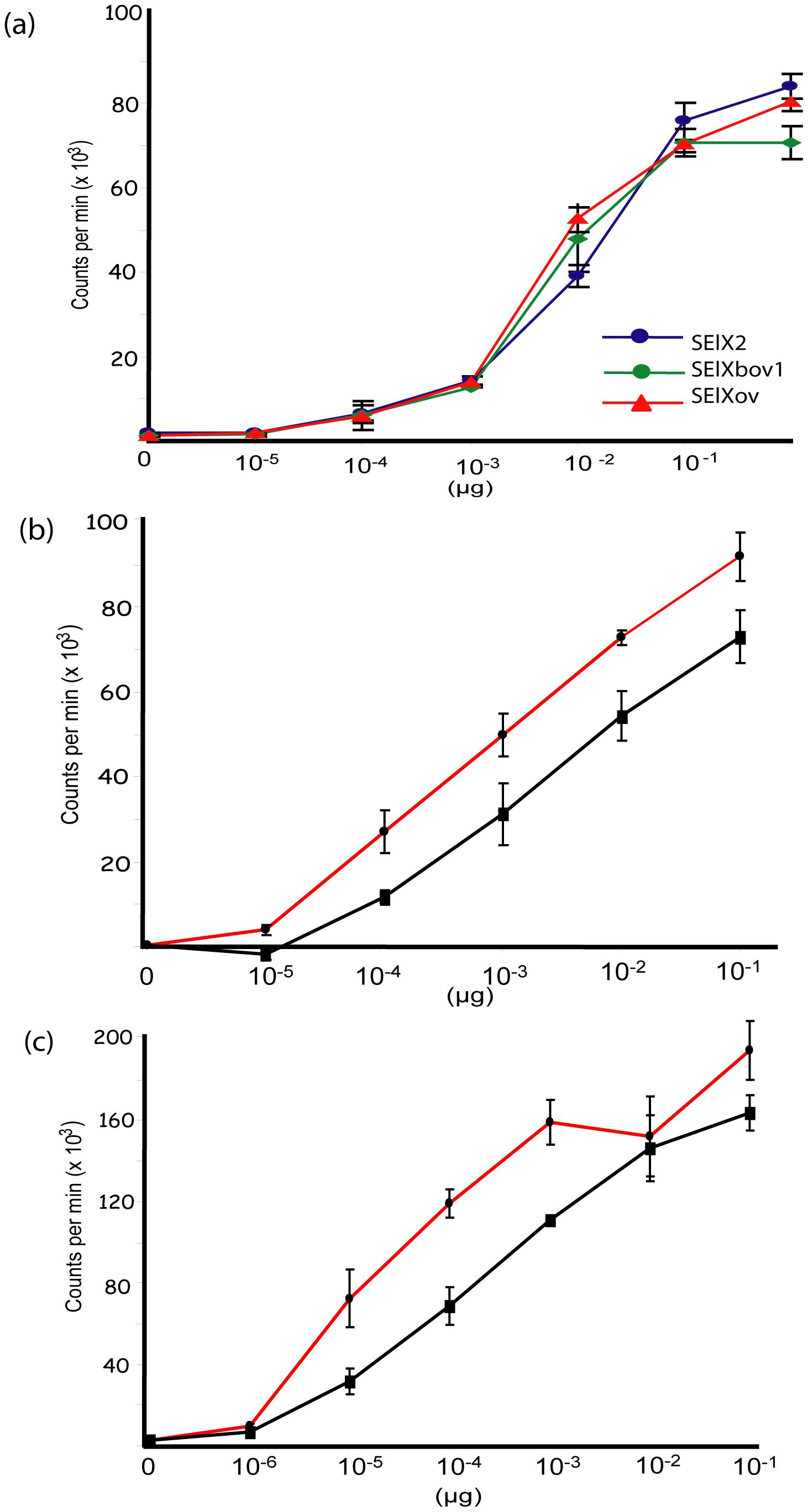 SElX stimulates proliferation of human and rabbit lymphocytes.