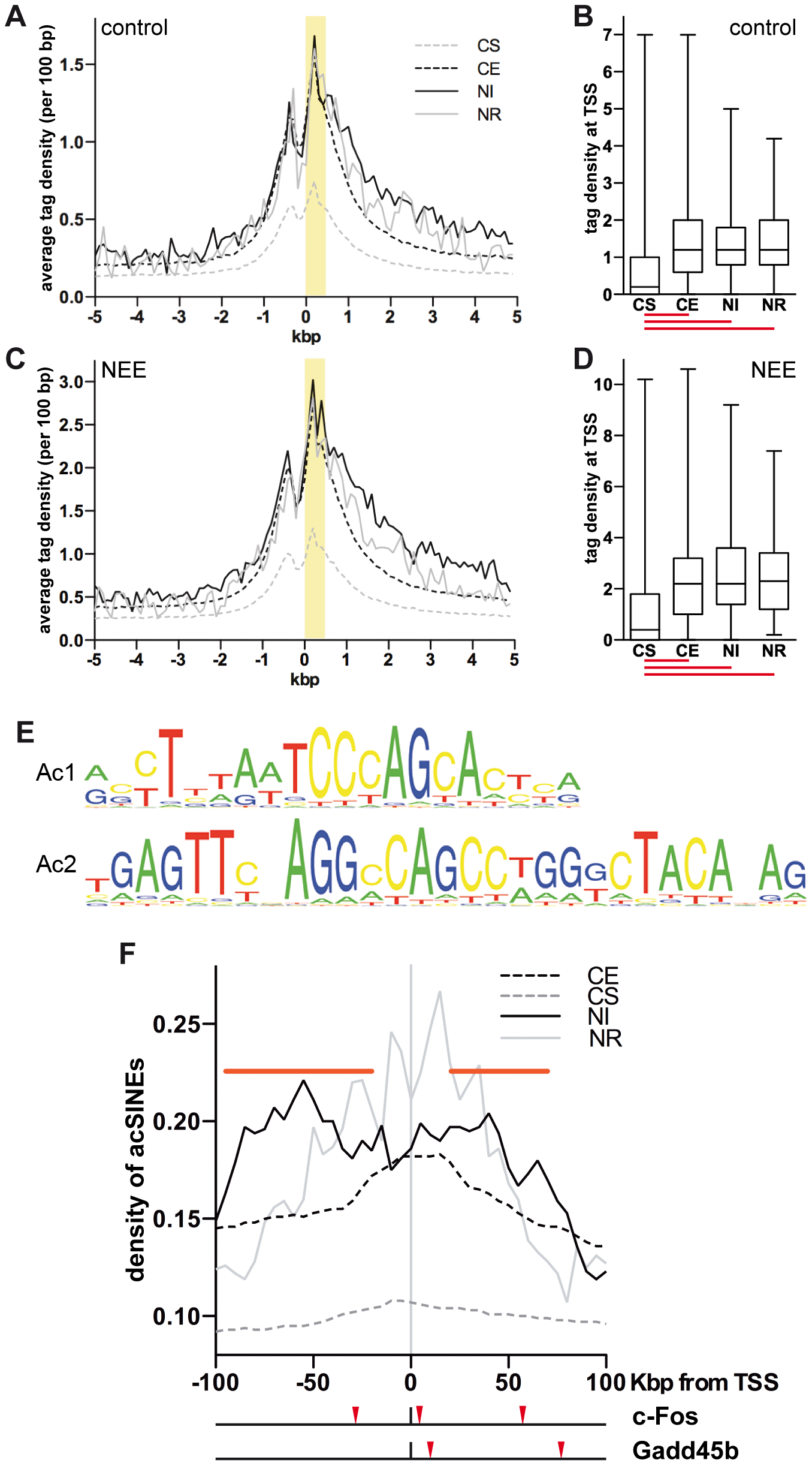 Acetylated SINEs are a distinctive feature of NEE-induced genes.