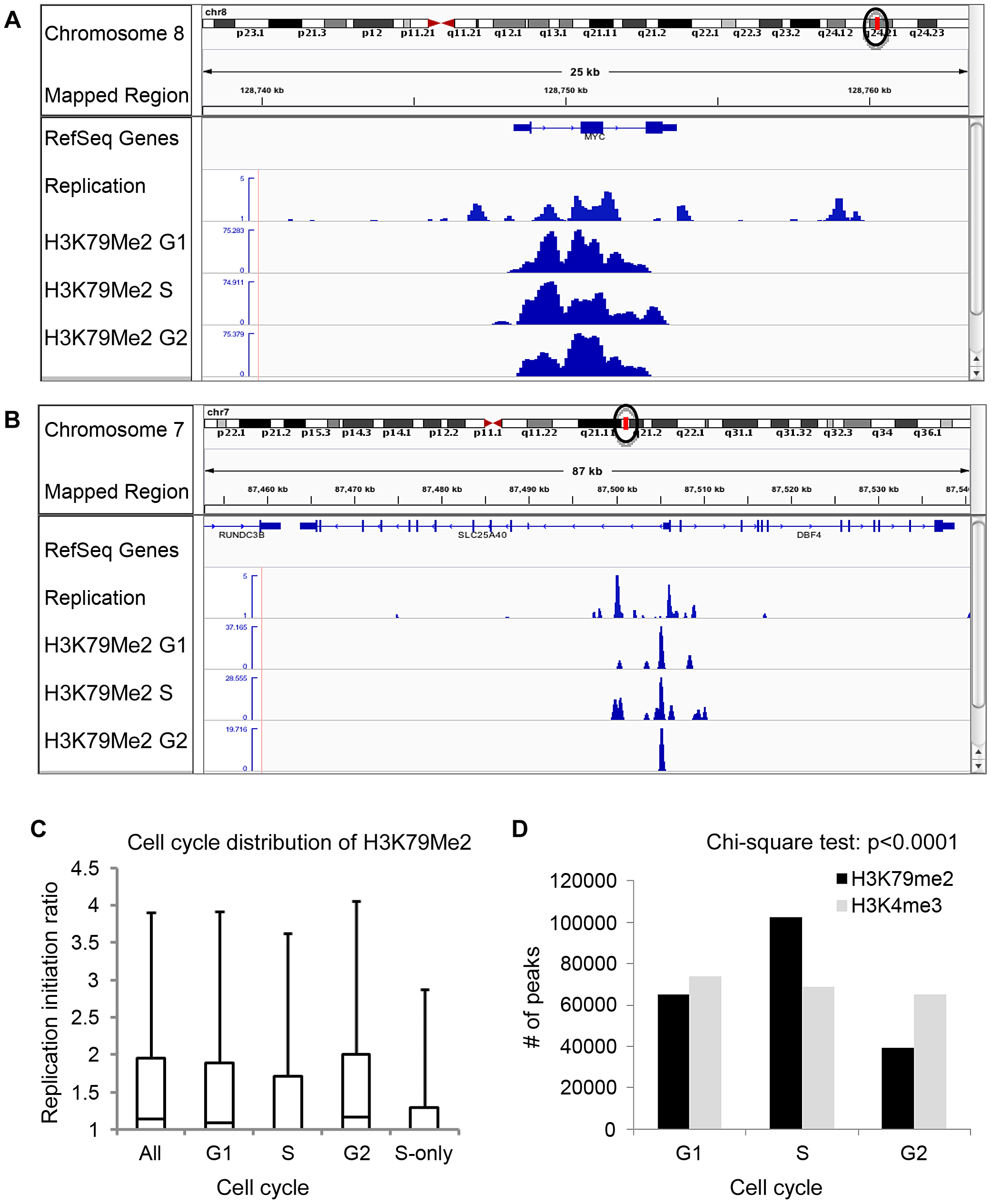 Preferential enrichment of initiation events in H3K79Me2 containing chromatin at the G1 and G2 phases of the cell cycle.