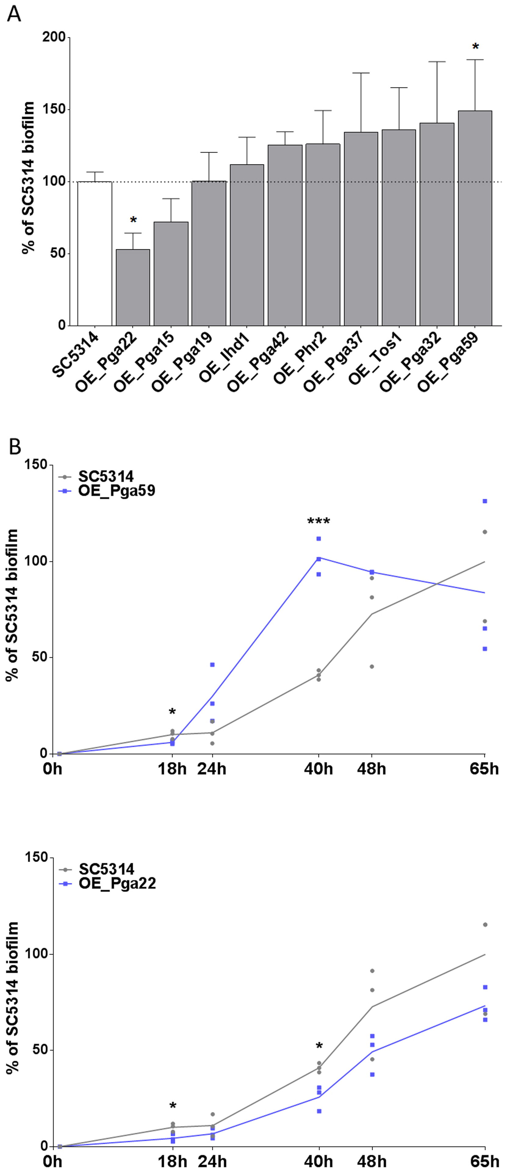 Overexpression of selected cell wall protein genes impacts the kinetics of biofilm formation.