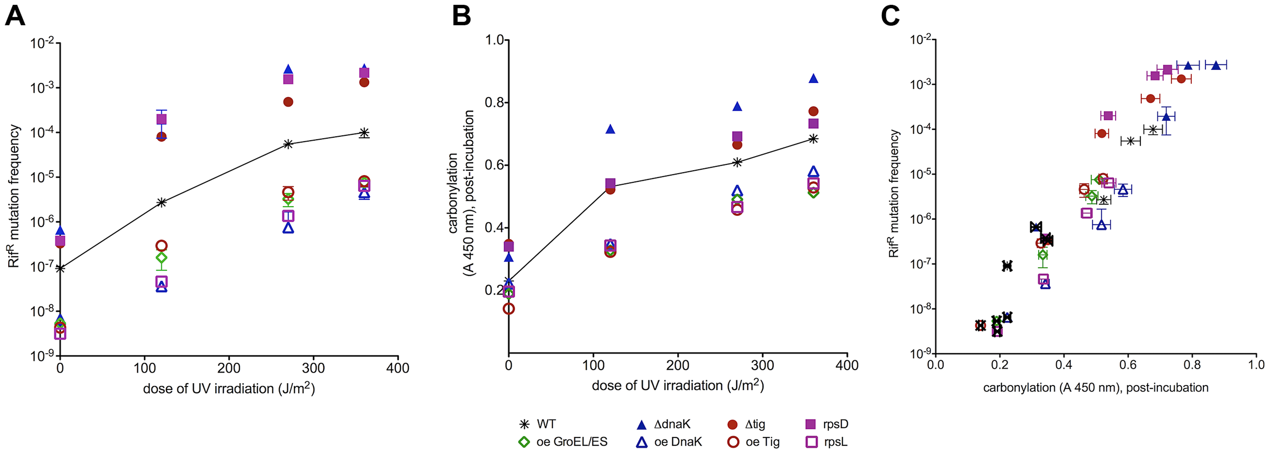 UV-induced mutation frequencies correlate with total proteome carbonylation.