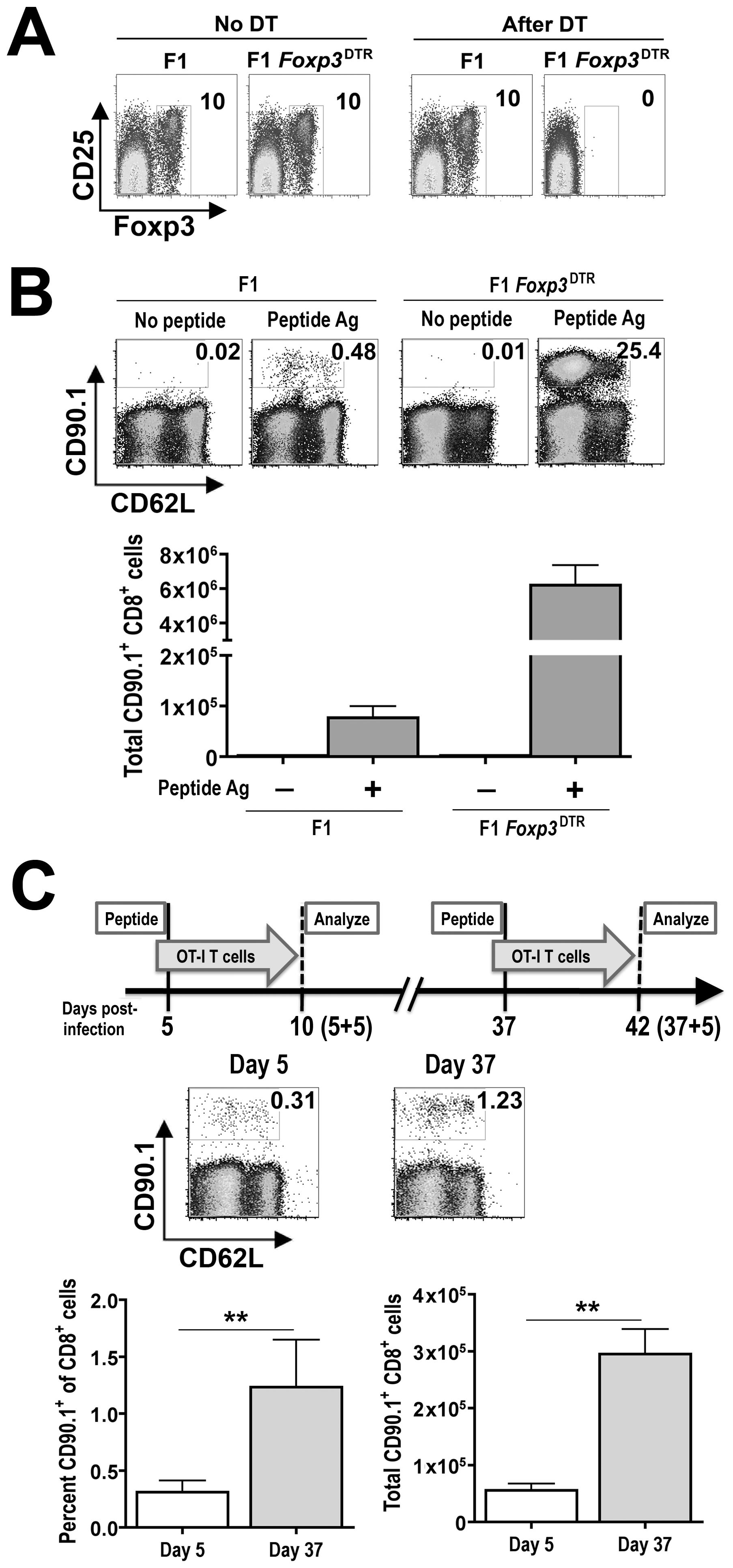Shifts in Treg-mediated <i>in vivo</i> suppression during persistent <i>Salmonella</i> infection.