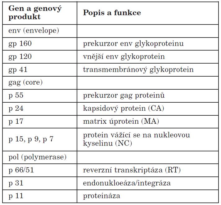 Strukturální geny HIV Table 2. HIV structural genes