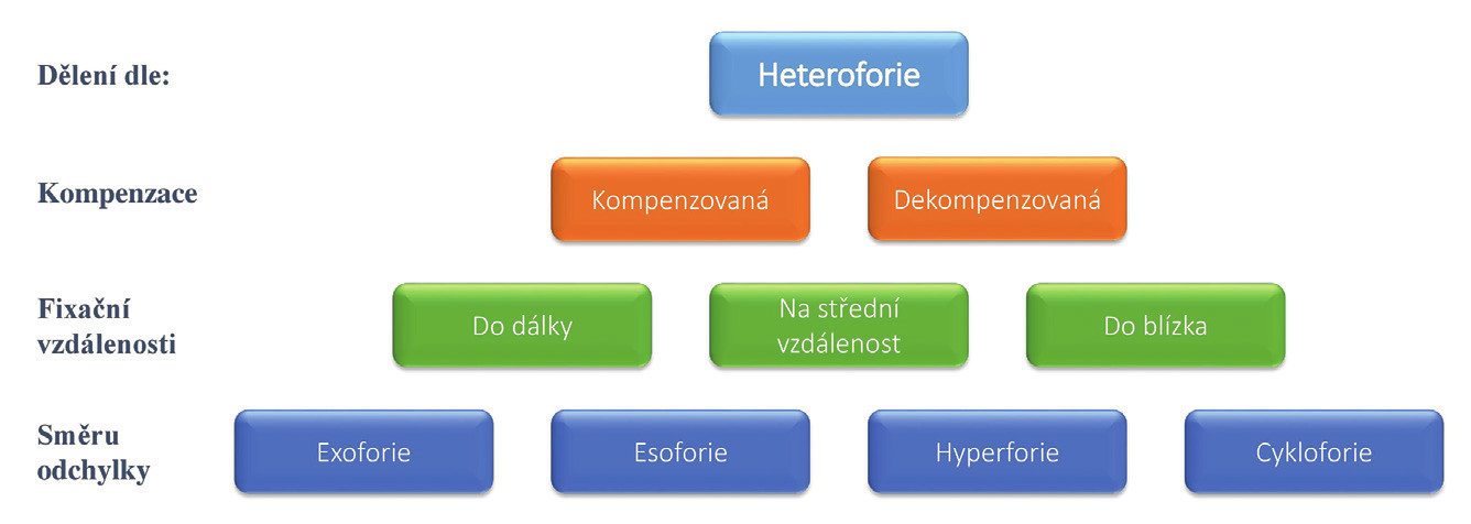 Klasifikace heteroforií dle způsobu kompenzace, fixační vzdálenosti a směru odchylky