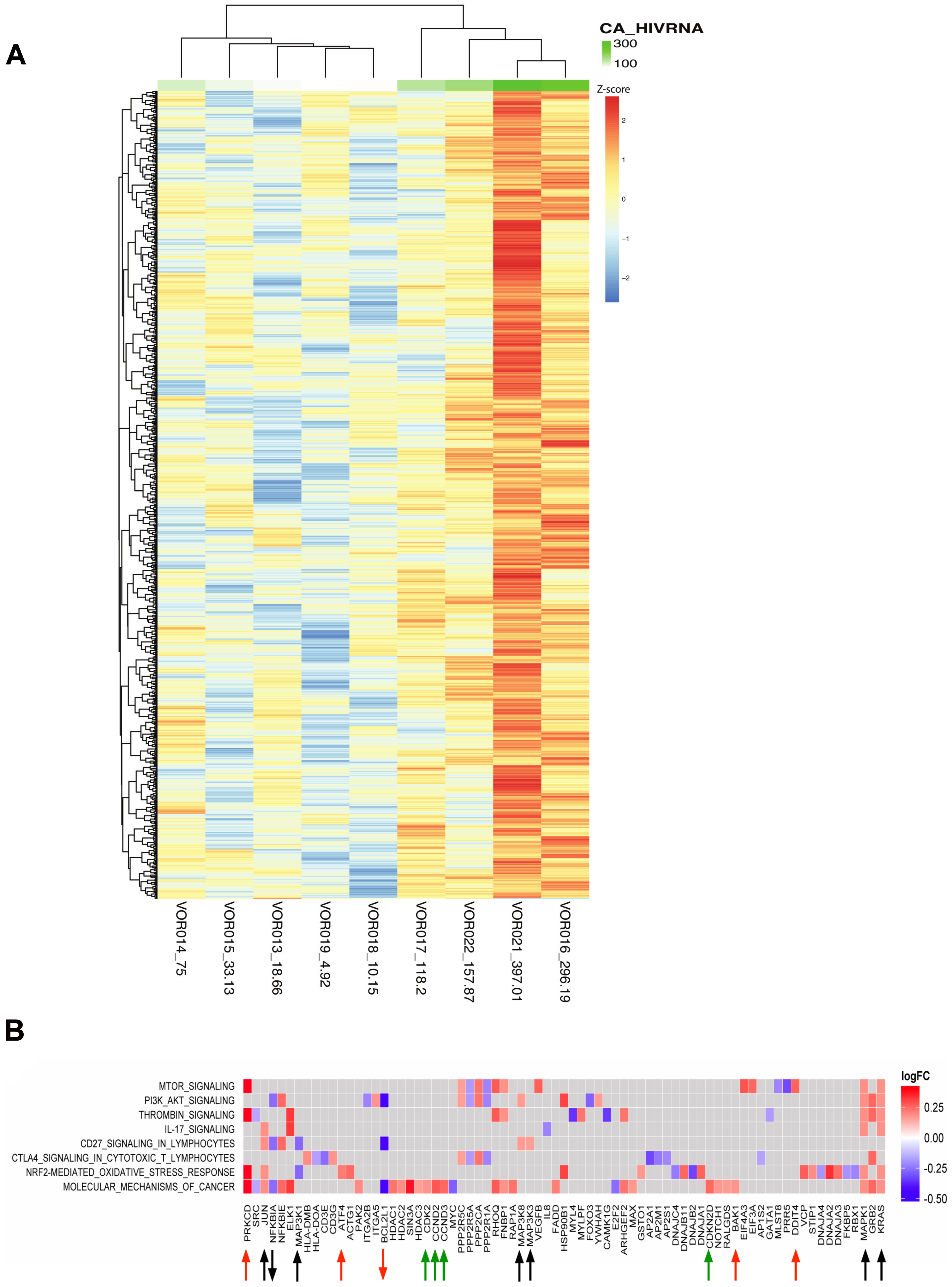 Changes in host genes were associated with an increase in CA-US HIV RNA after vorinostat.