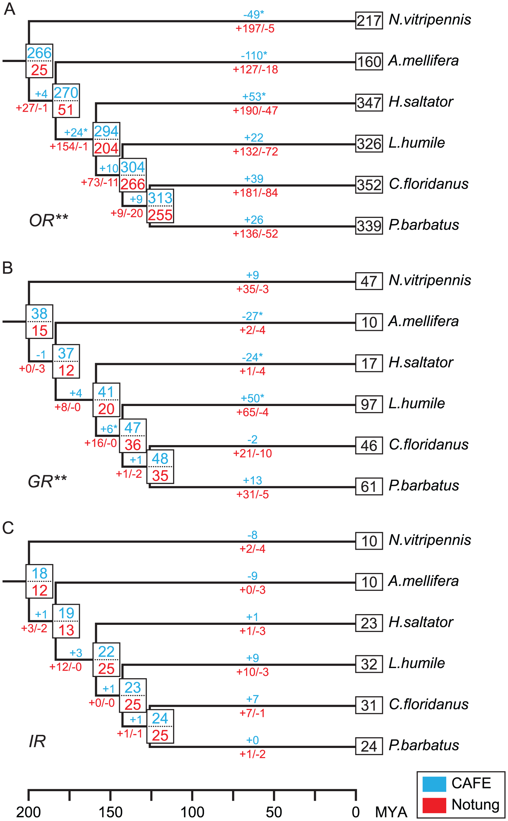 Estimated numbers of gene birth-and-death events and ancestral gene copies for chemosensory gene families.