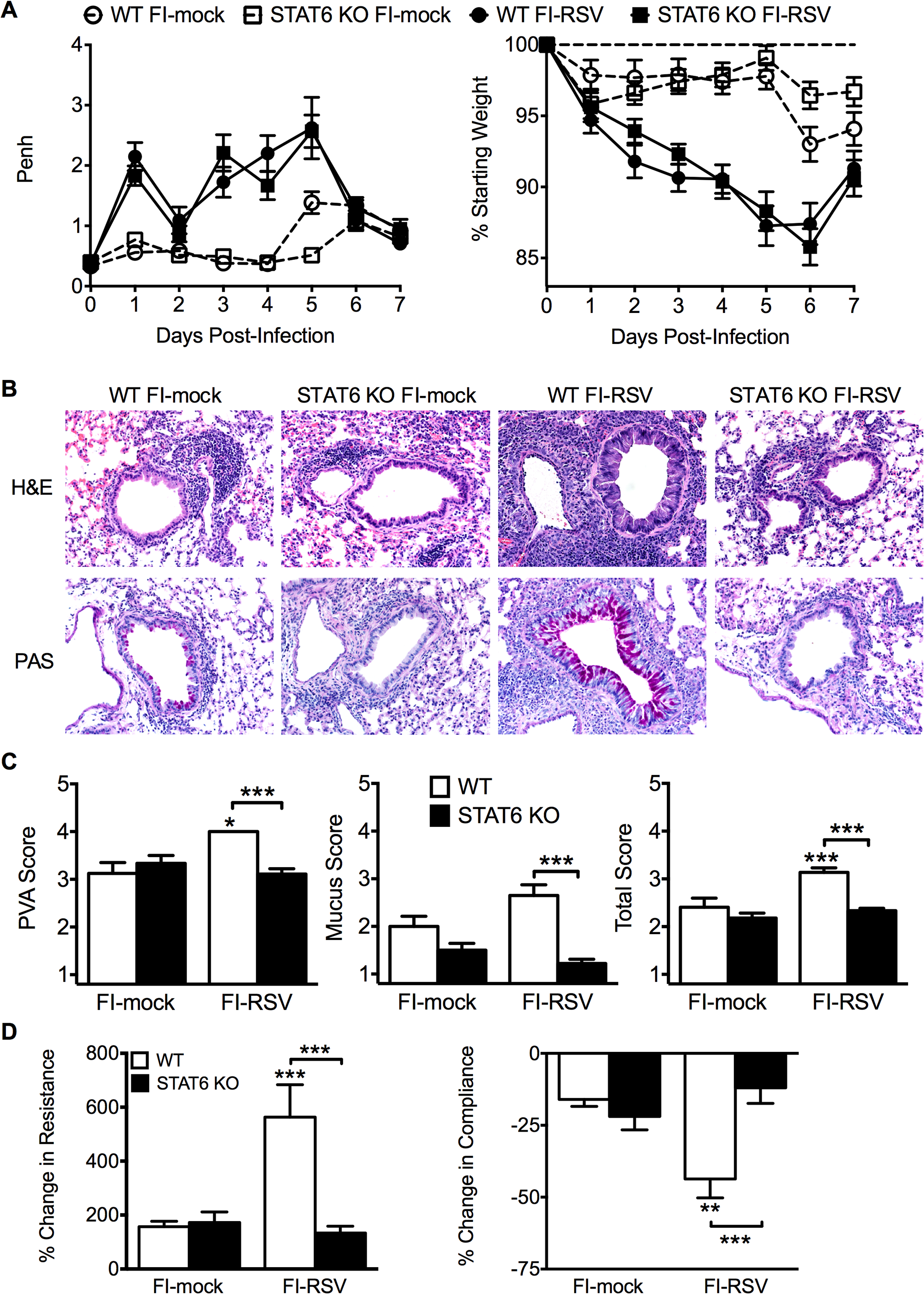Th2-associated immune response is necessary for lung pathology and airway hyperreactivity.