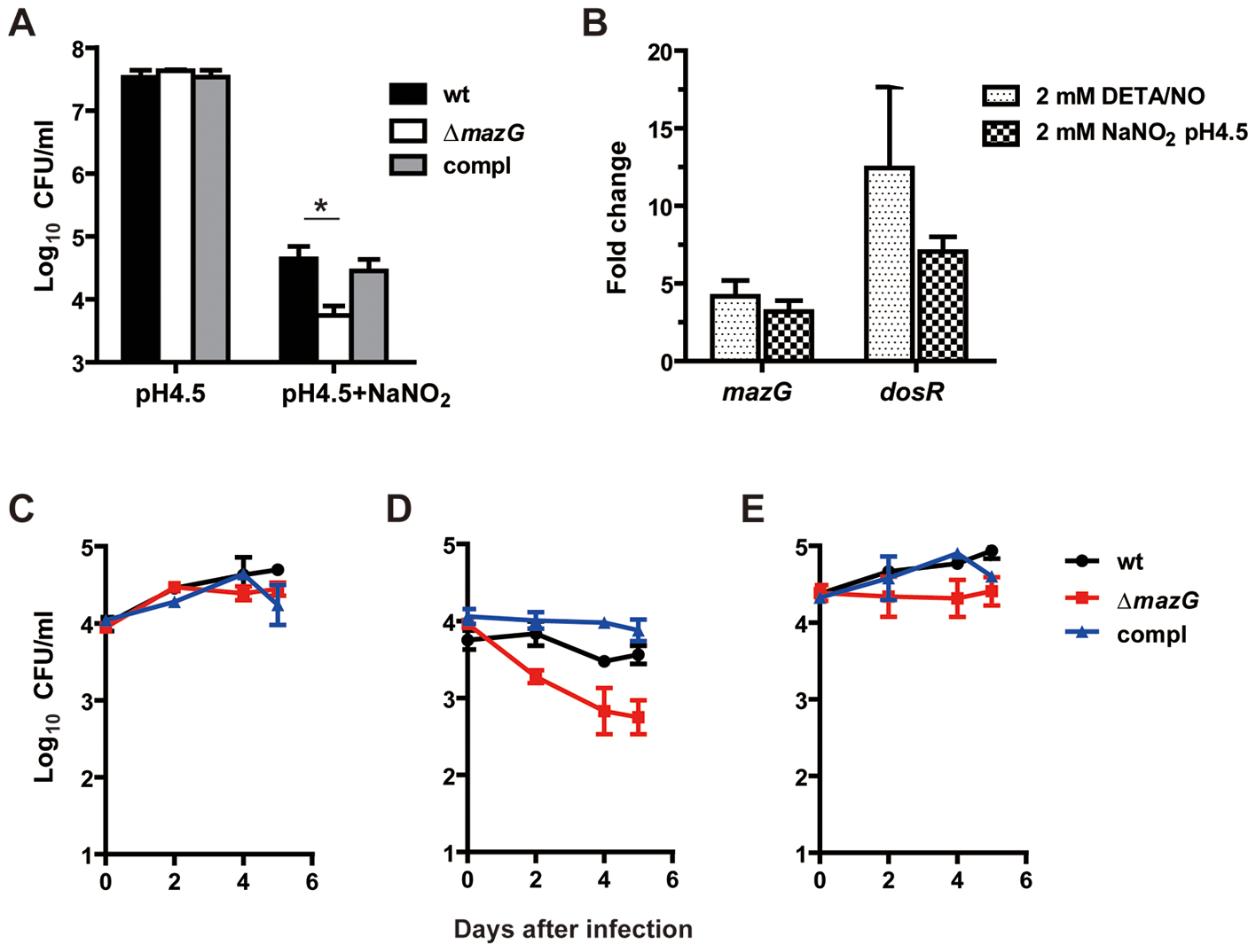 <i>Mtb</i> MazG is required for resistance to RNS shown <i>in vitro</i> and <i>ex vivo</i>.