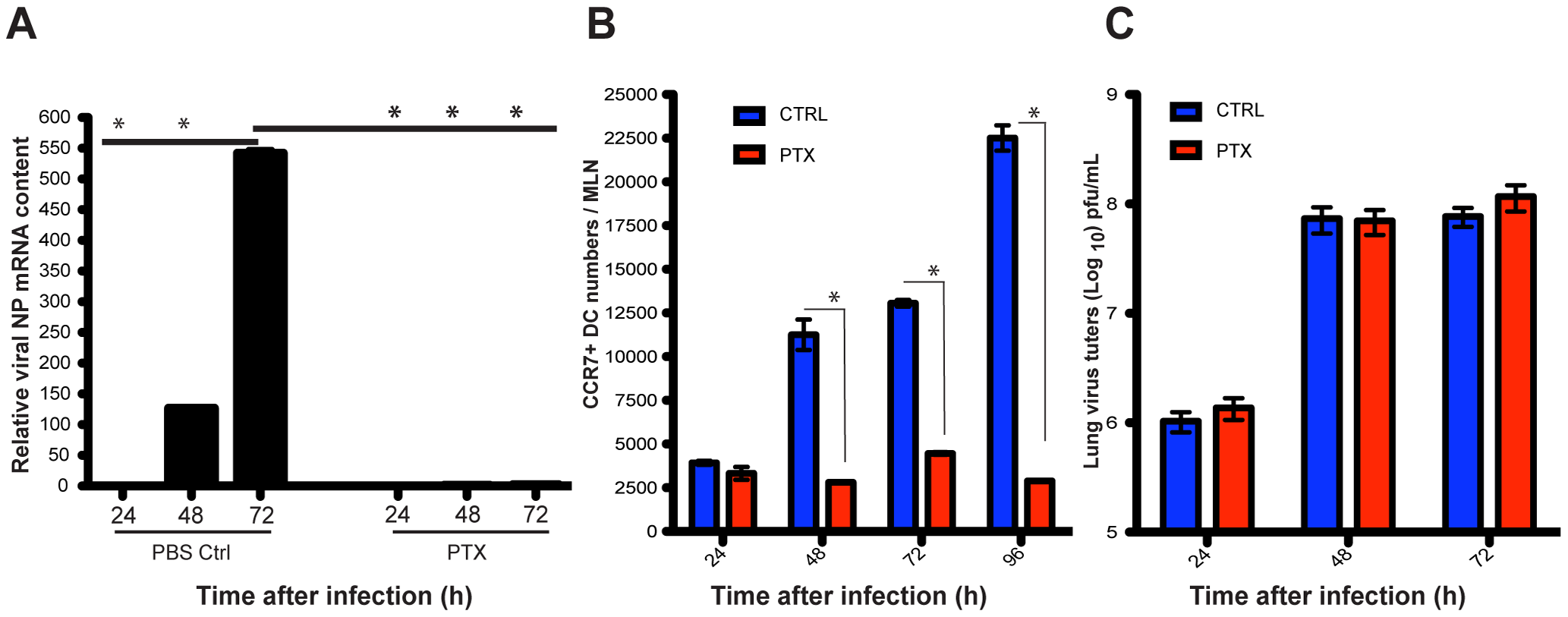 Blockade of lung migratory cells abolishes viral mRNA production in the MLNs.