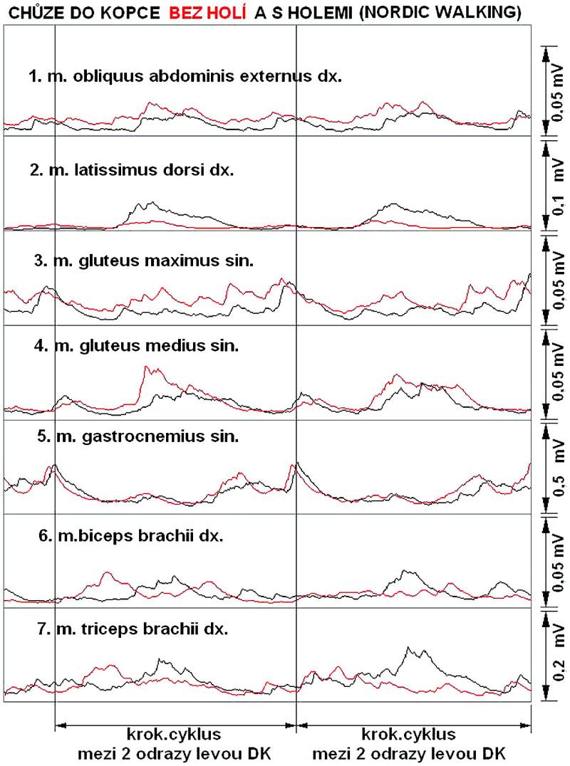 Průběh aktivace měřených svalů v průběhu 2 reálně naměřených krokových cyklů.