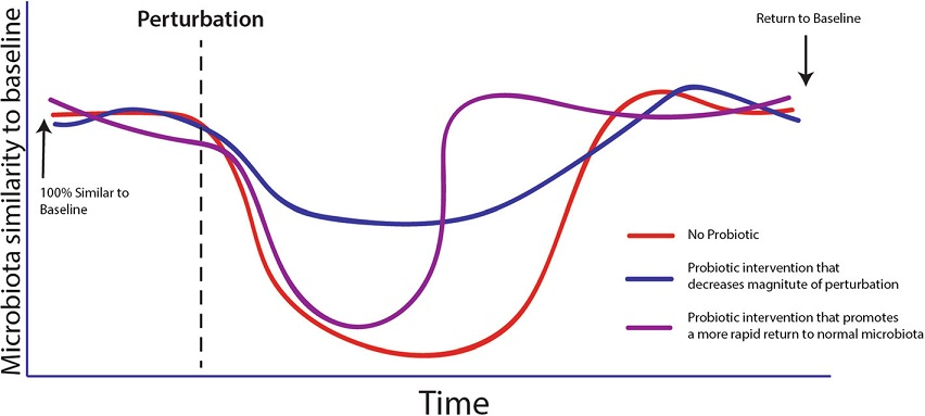 The concept of homeostasis as expressed by reducing the magnitude or duration of the impact of a stress on the microbiota. Modified from Sanders et al. [12], no permission required