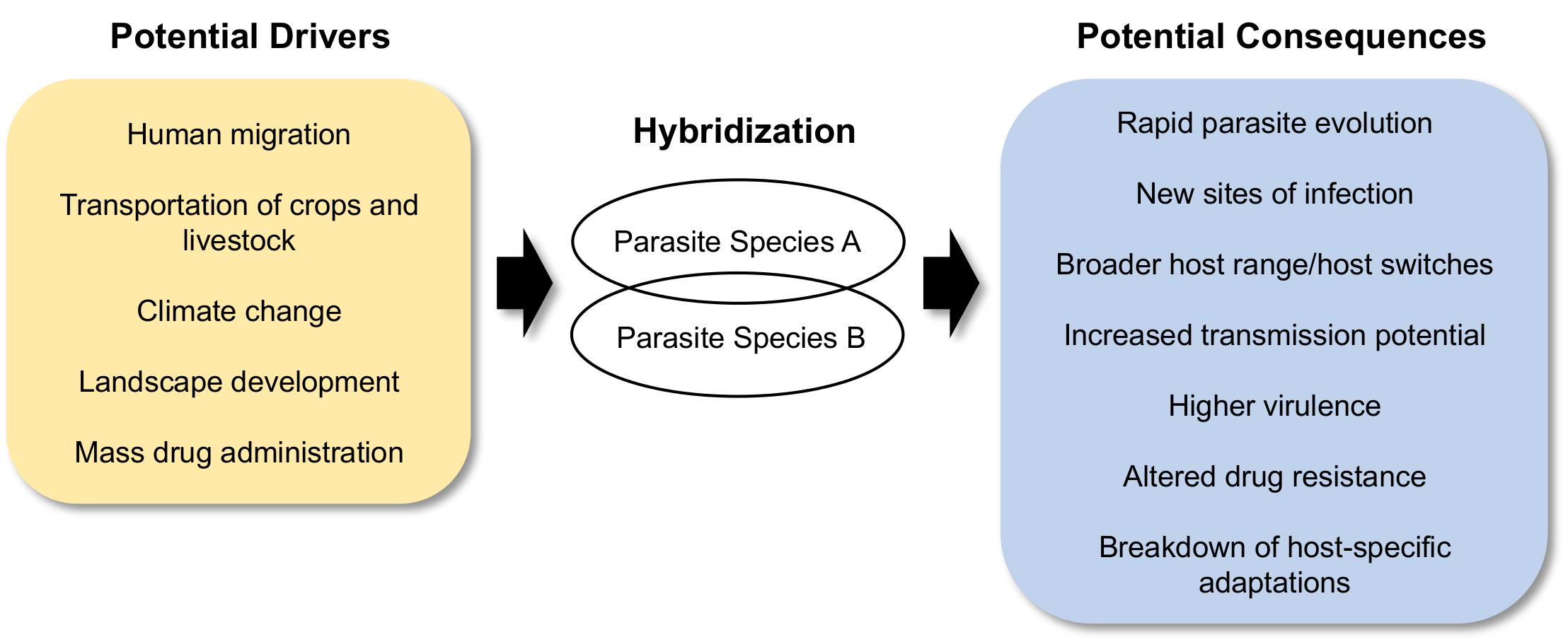 Schematic of the drivers and consequences of parasite hybridization.