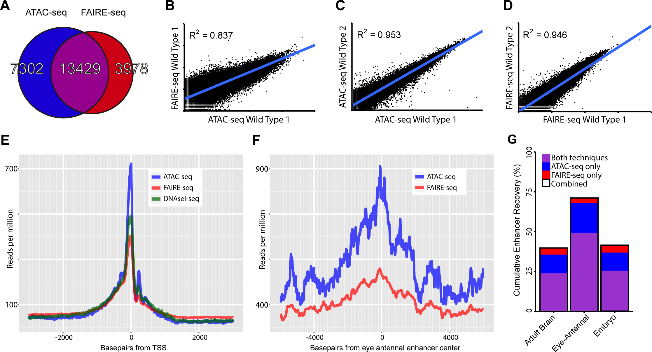 Comparing general features of ATAC-seq and FAIRE-seq.