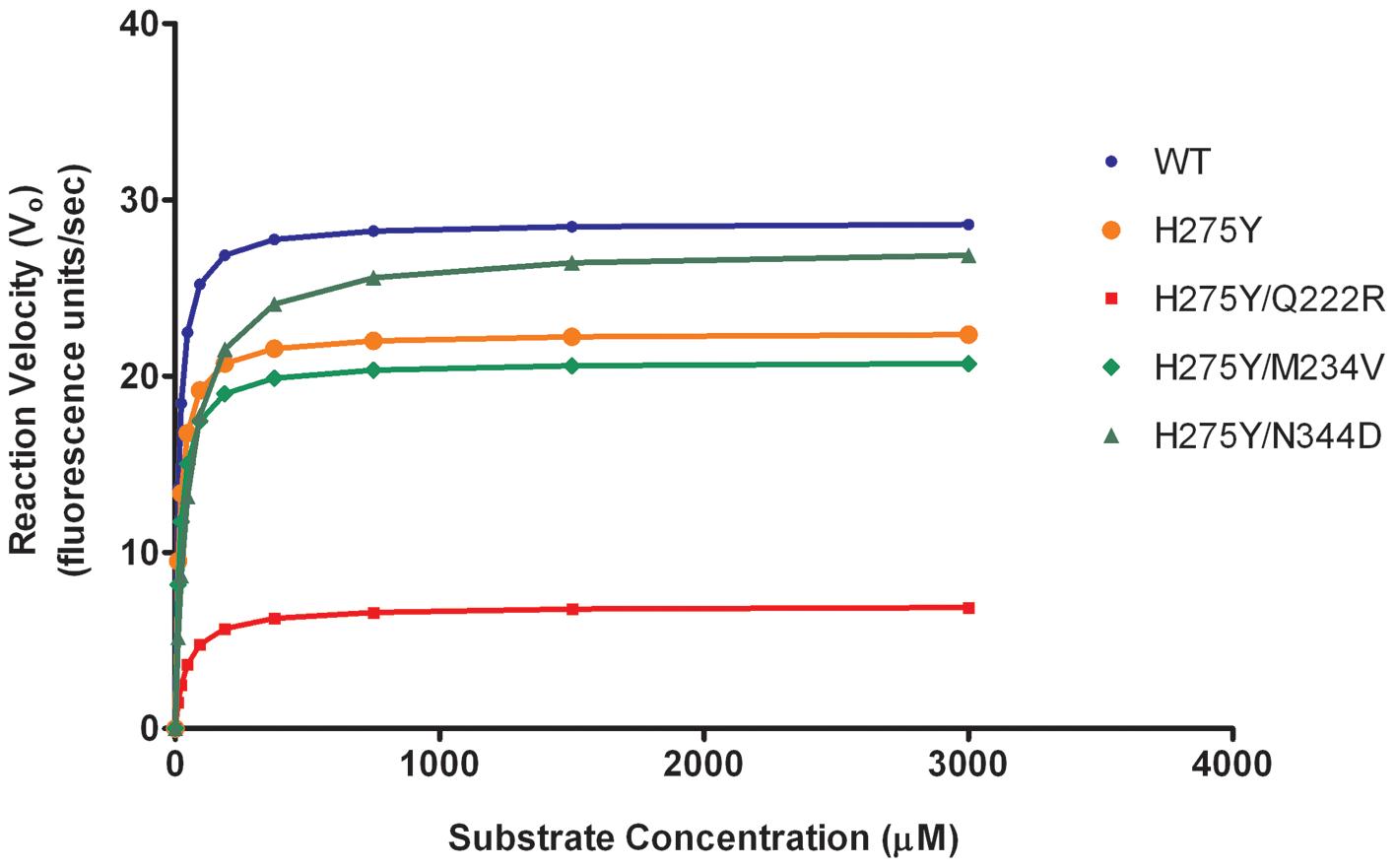 Neuraminidase (NA) enzyme kinetics of recombinant A/Brisbane/59/2007-like (H1N1) viruses.