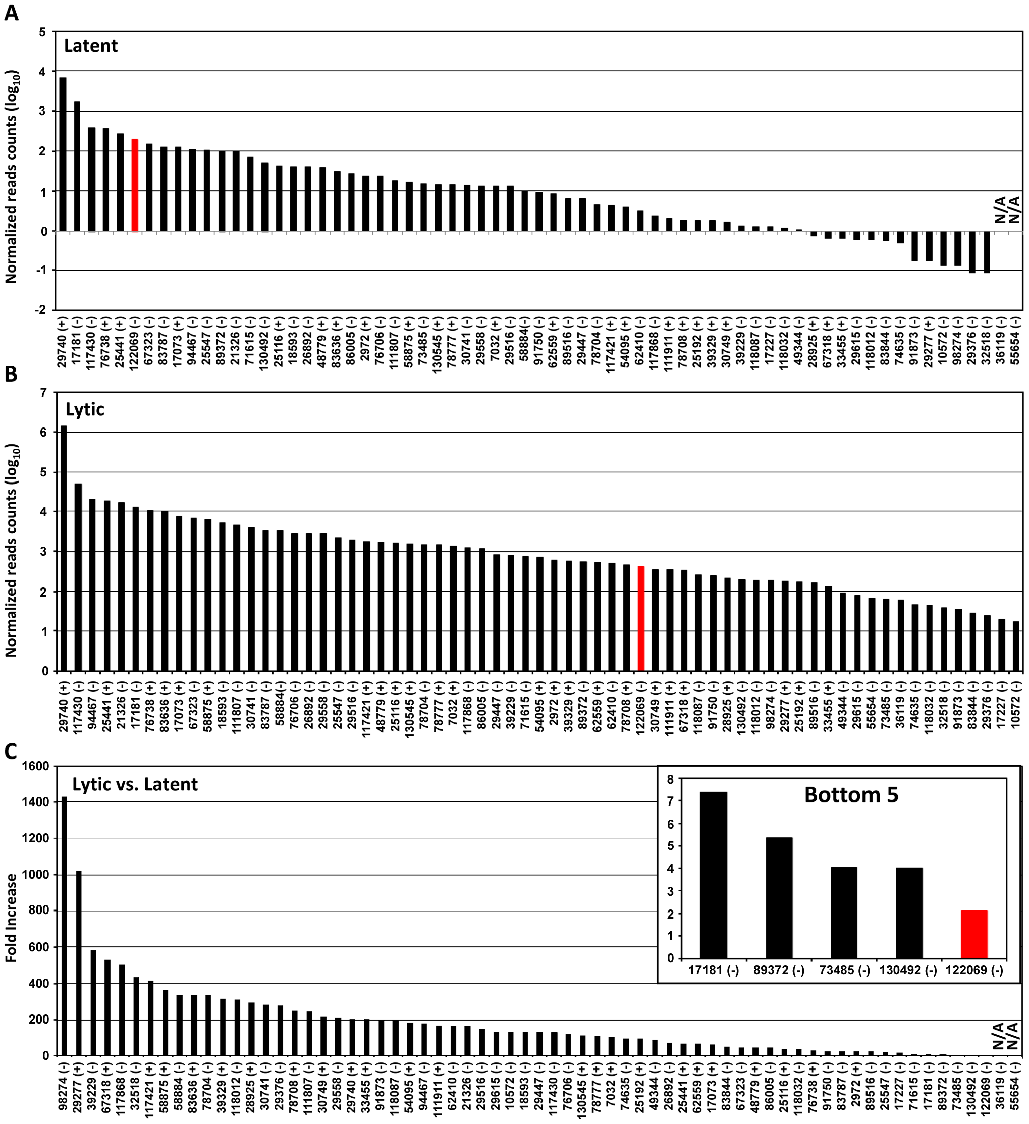 Usage of identified KSHV pA sites from latent to lytic infection.