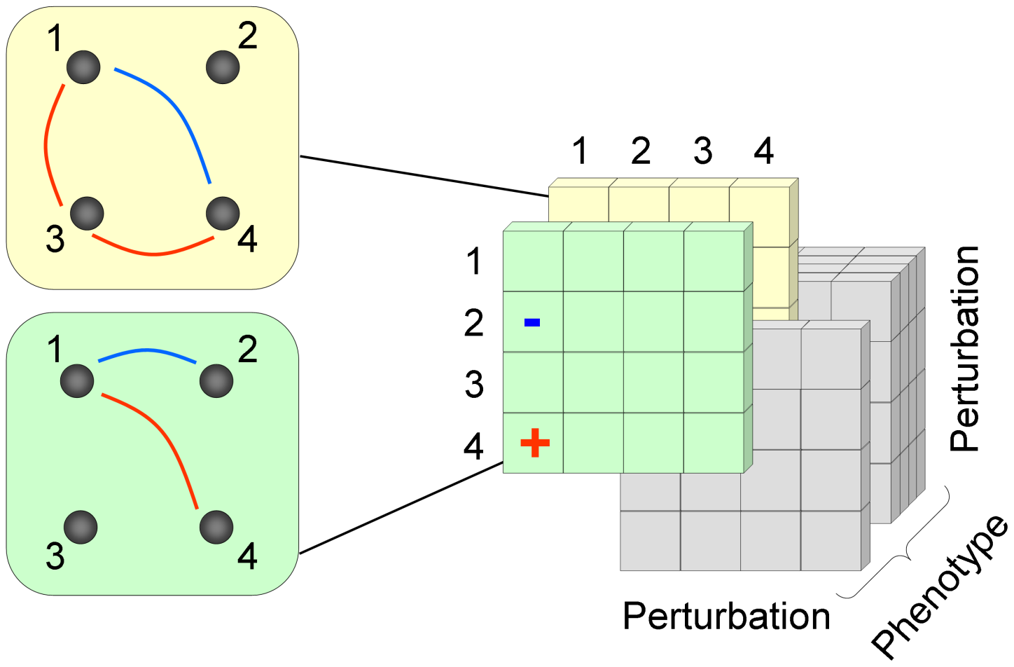 A schematic representation of the 3D epistatic map.