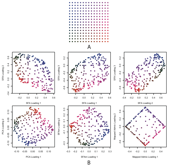 Results of SFA, PCA, SFAm, and admixture applied to simulated genotype data from a single 2-D habitat.