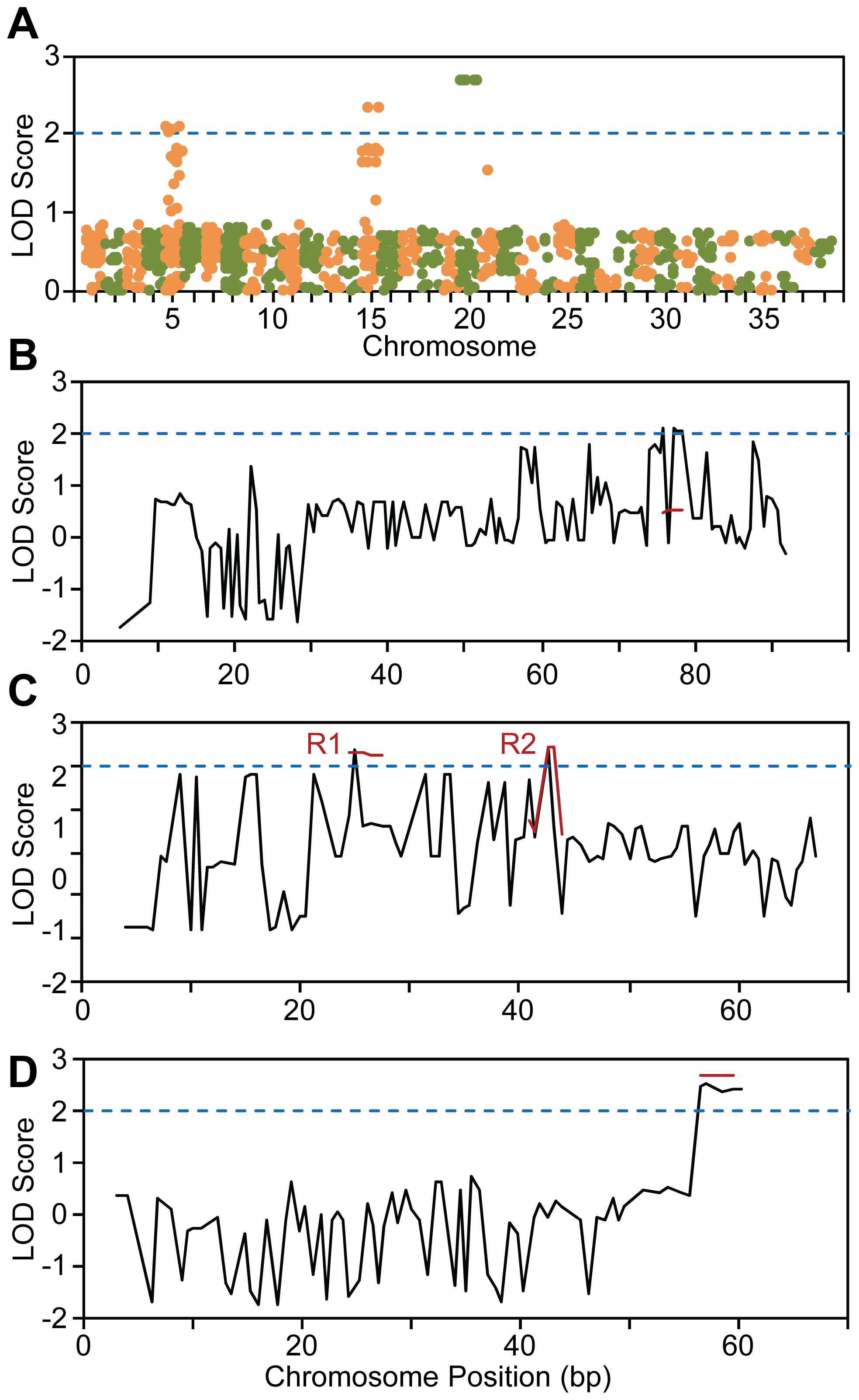 Genome-wide linkage analysis of SNP genotyping data.
