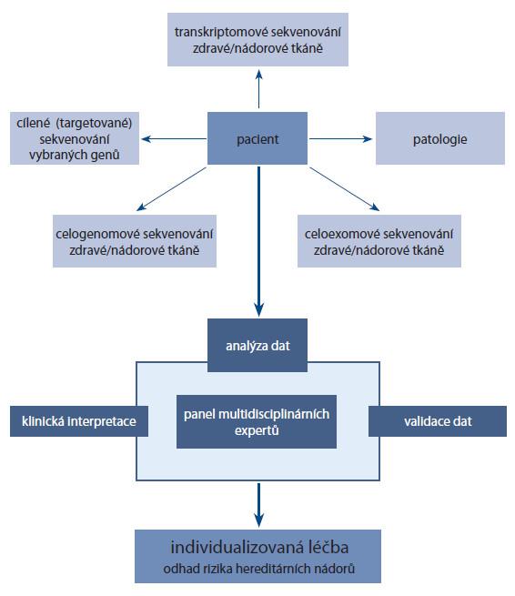 """Shrnutí workflow integrace omických dat. U daného pacienta je osekvenován nádorový a zdravý genom. Genetická informace je analyzována a interpretována multidisciplinárními experty. Pacientovi je navržena léčba """"šitá na míru"""". Z analýzy profituje také pacientova rodina, protože se zjistí i hereditární riziko vzniku nádorového onemocnění a mohou být provedena příslušná opatření [16]."""