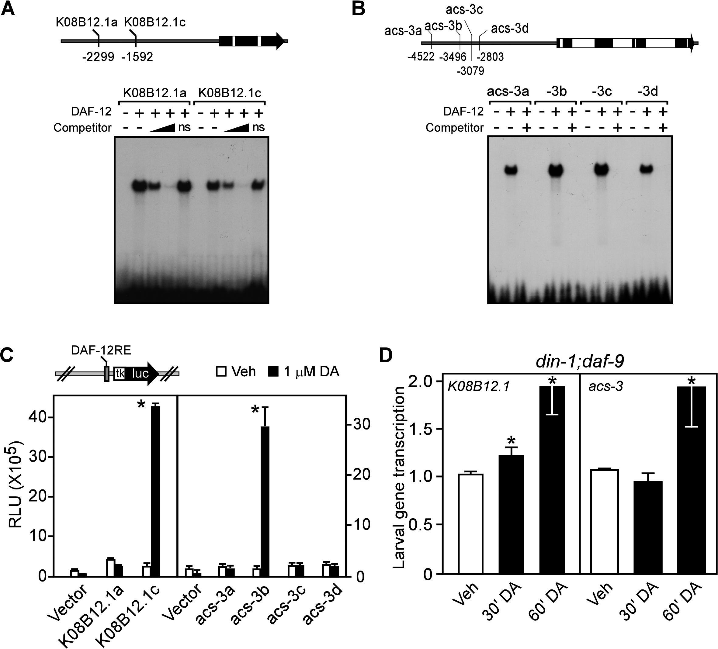 Fat utilization genes are direct targets of <i>C</i>. <i>elegans</i> DAF-12.