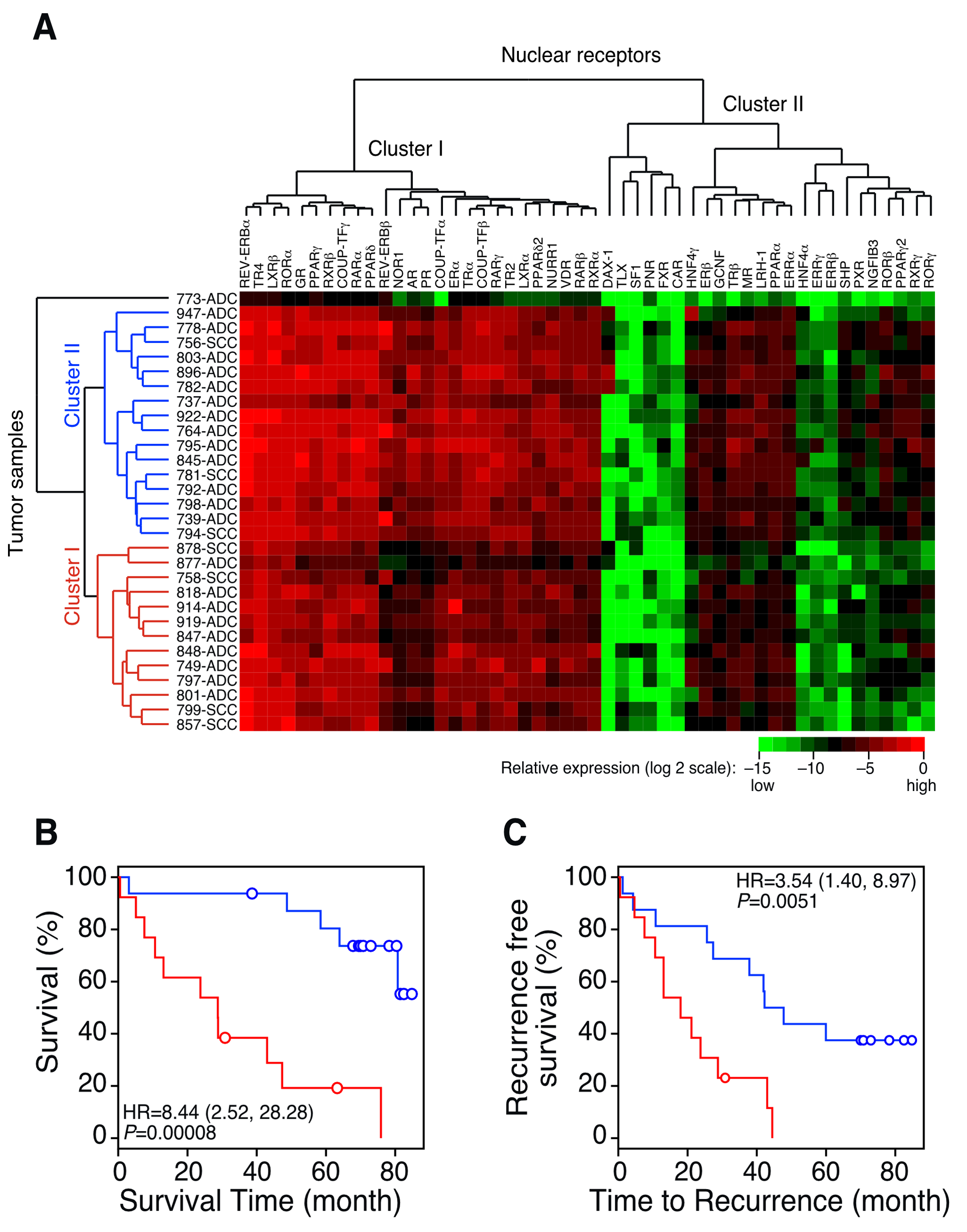 QPCR analysis of the NR gene expression signature in patients with lung cancer.